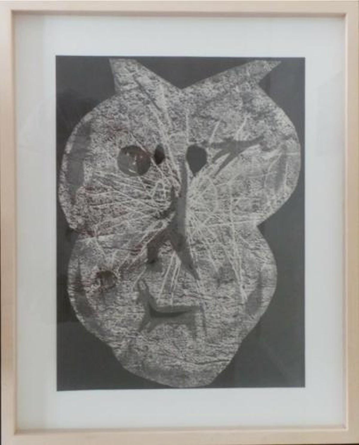 Pablo Picasso - Diurnes Picasso / Andre Villers 1962 Berggruen kopen? Bied vanaf 240!