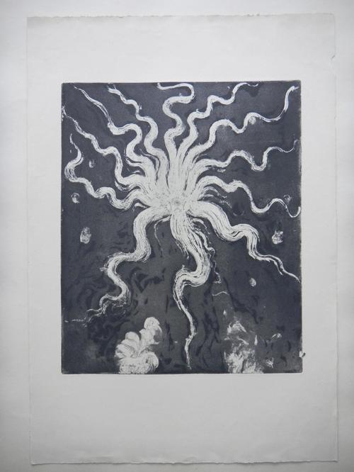 Ernst Fuchs - Ernst FUCHS, Radierung aus 1950,Feuerzeichen IV. kopen? Bied vanaf 290!