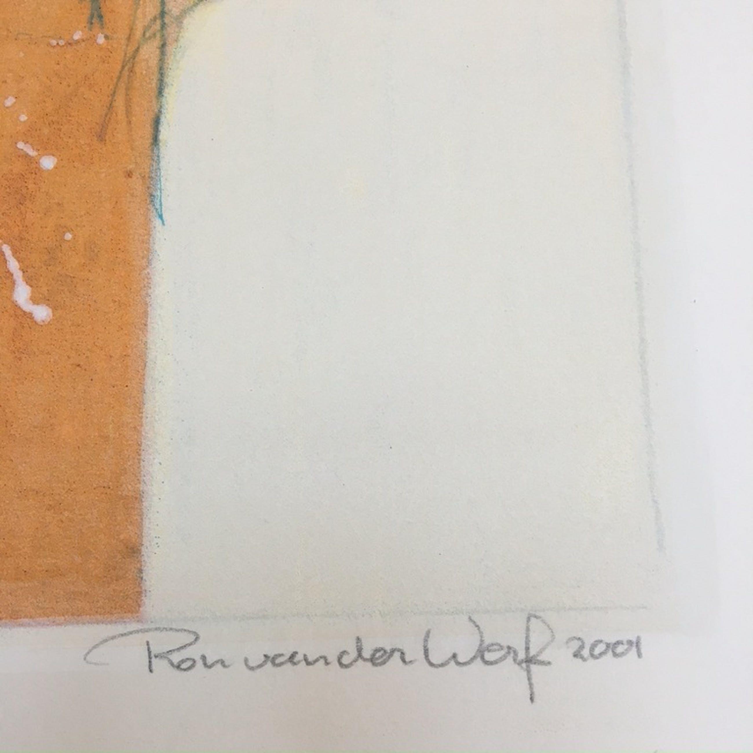Ron van der Werf zeefdruk 'Symfonie I' kopen? Bied vanaf 75!
