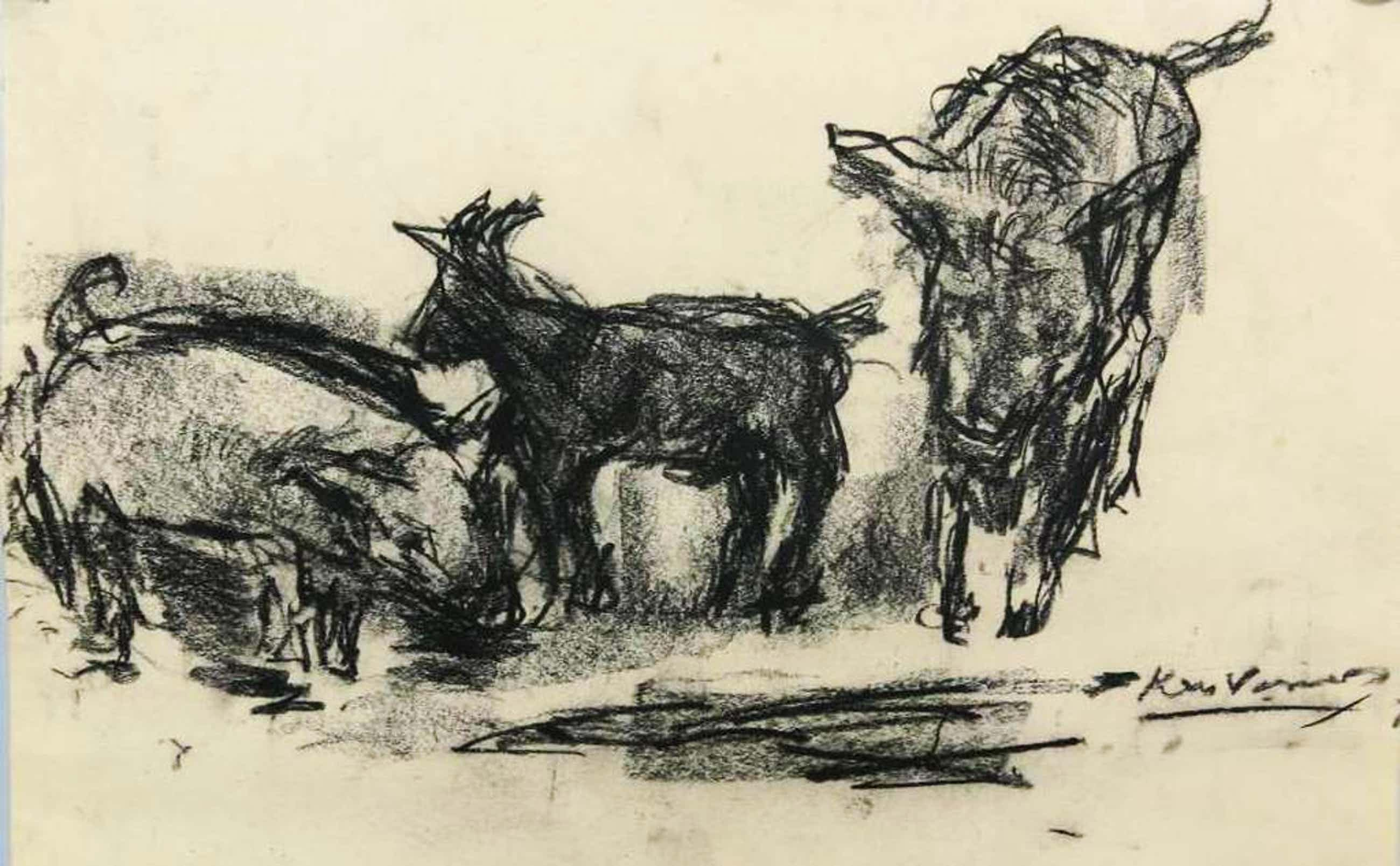 Kees Verwey: houtskool op papier, Een varken, een geit en een ezel kopen? Bied vanaf 150!
