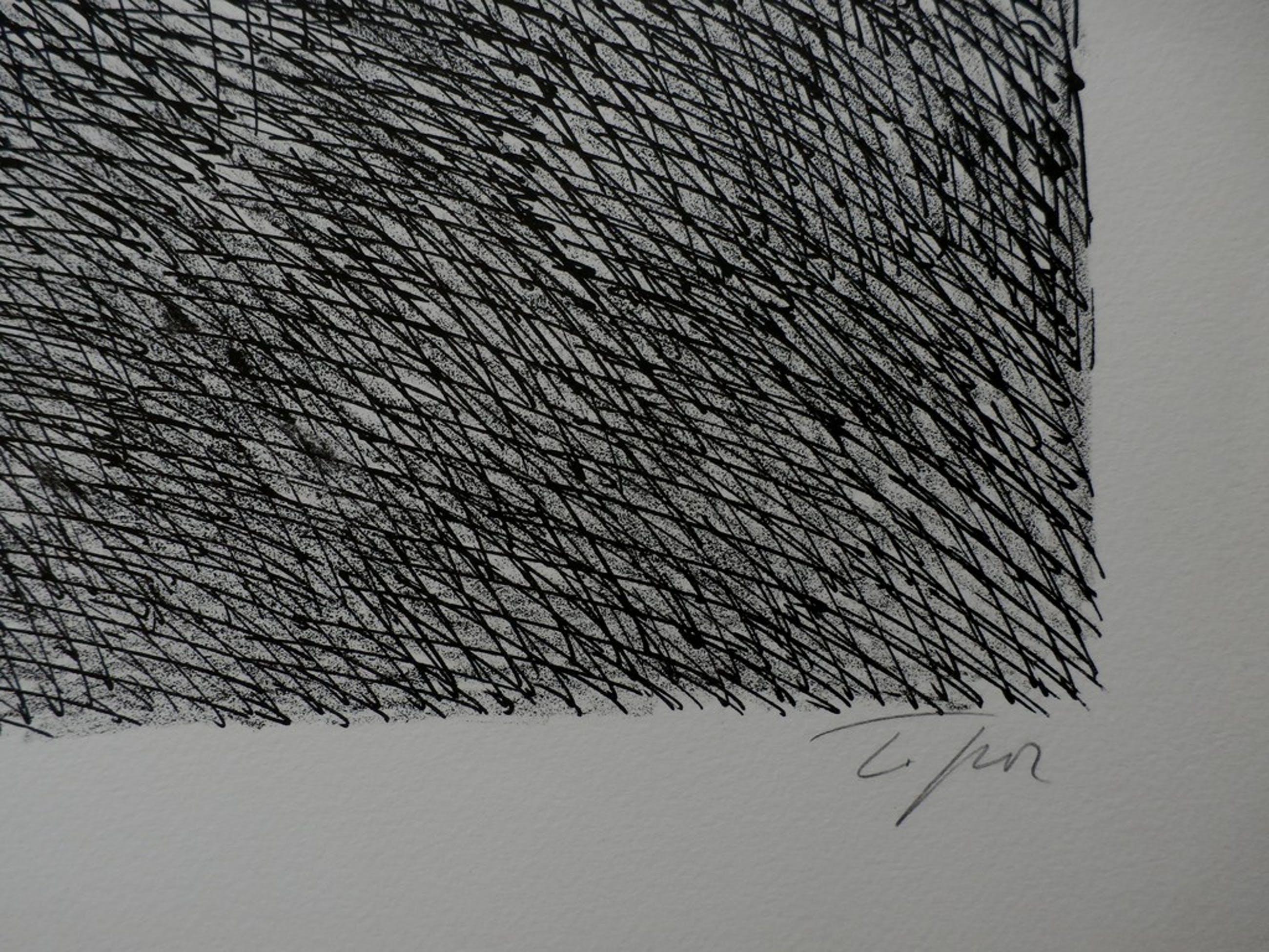 Roland Topor, surrealistische litho: Enteté kopen? Bied vanaf 80!