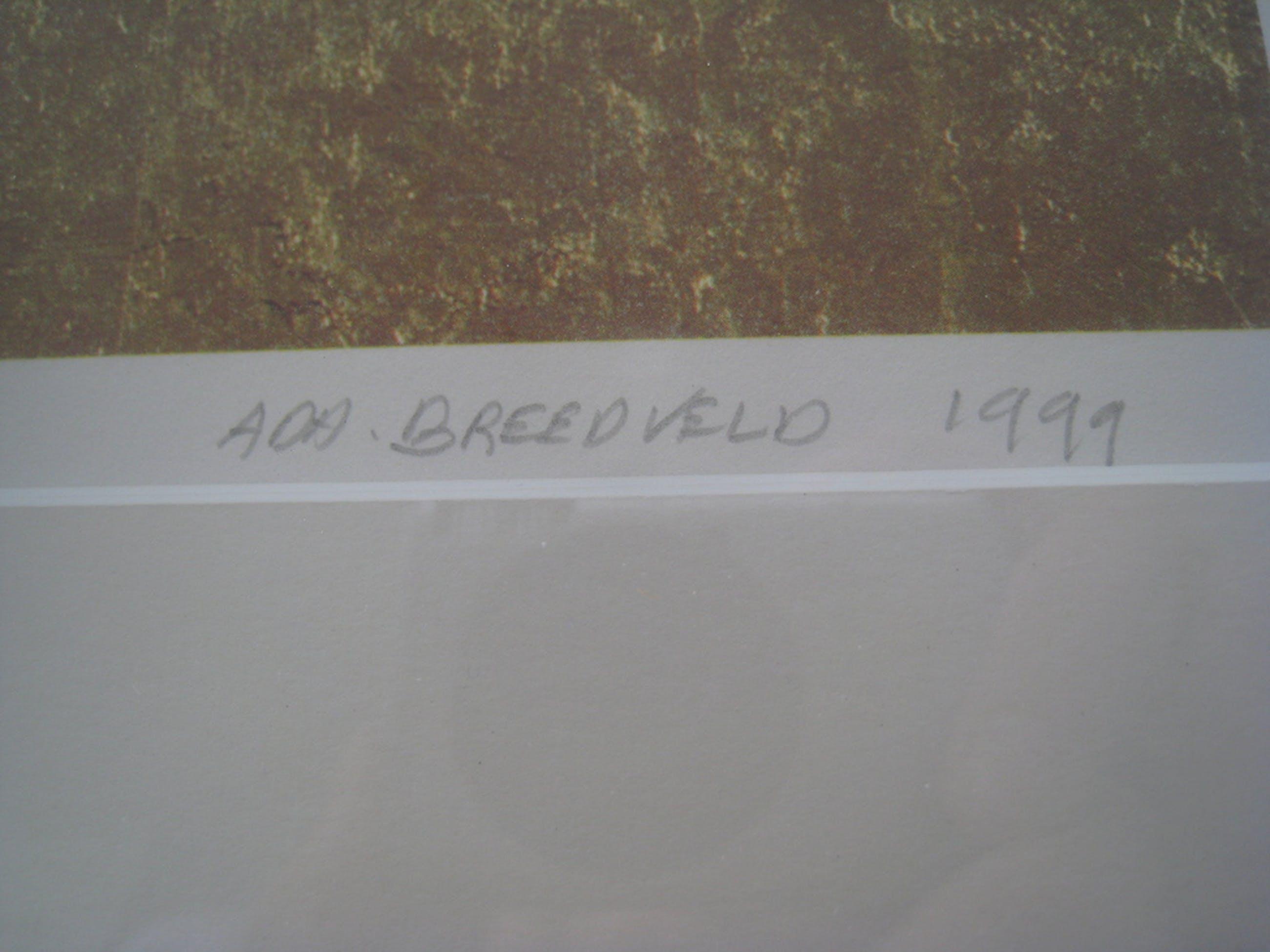 Zeefdruk Ada Breedveld  kopen? Bied vanaf 35!