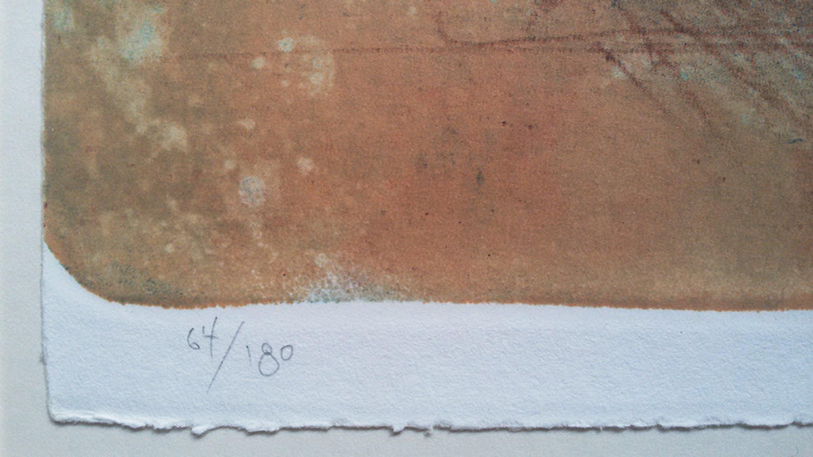 Laatste keer: Massimo Rao - Antenato, litho (prachtig ingelijst, groot) kopen? Bied vanaf 200!