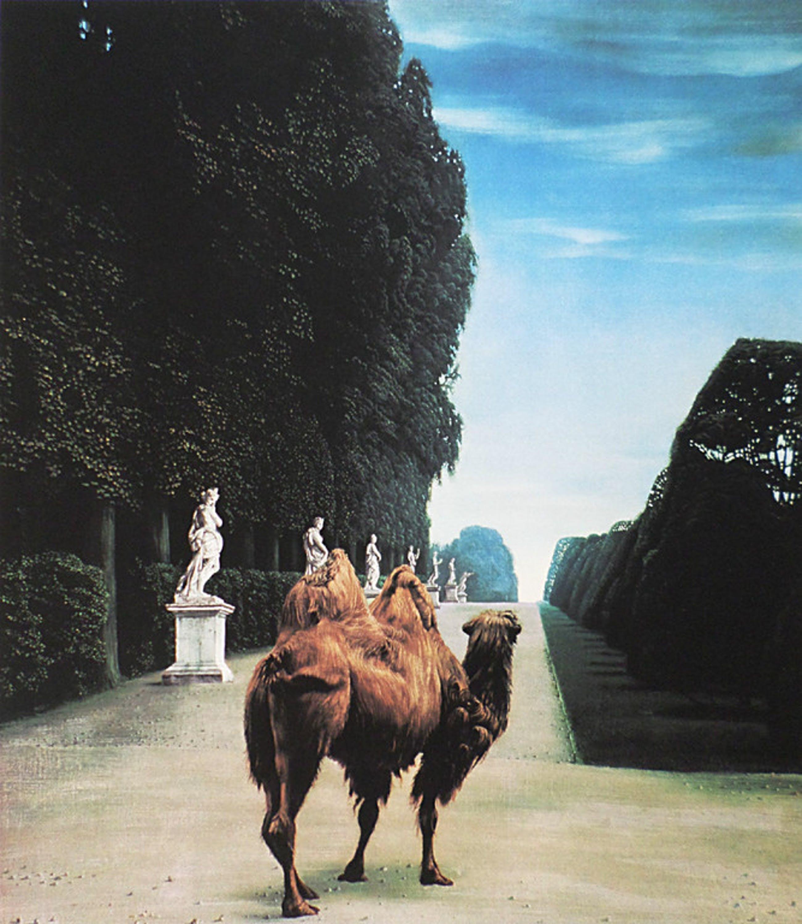 Carel Willink - Kameel in het park van Versailles, digitale kleurenprint kopen? Bied vanaf 75!