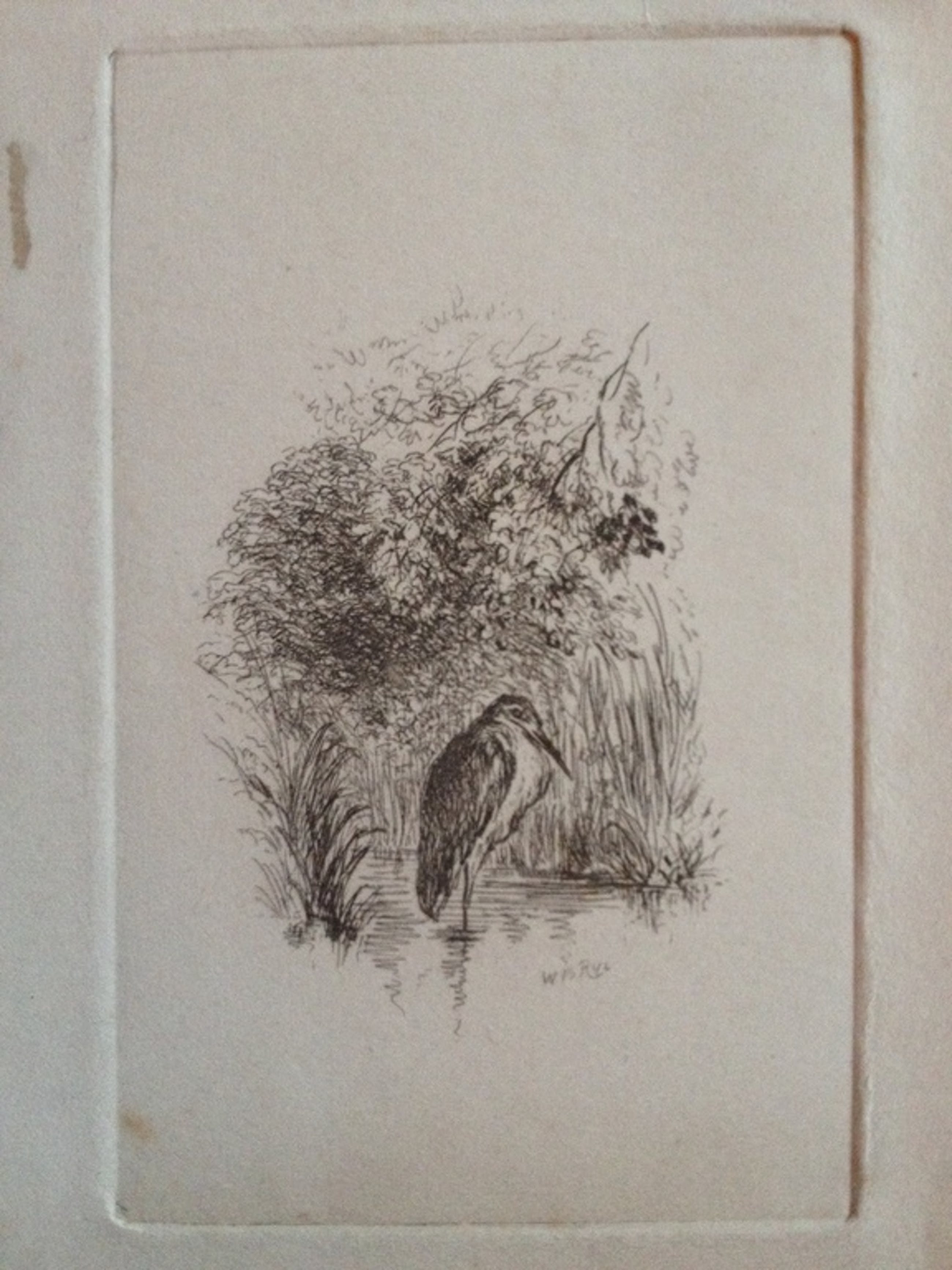 William Brenchley Rye (1818-1901) kopen? Bied vanaf 1!