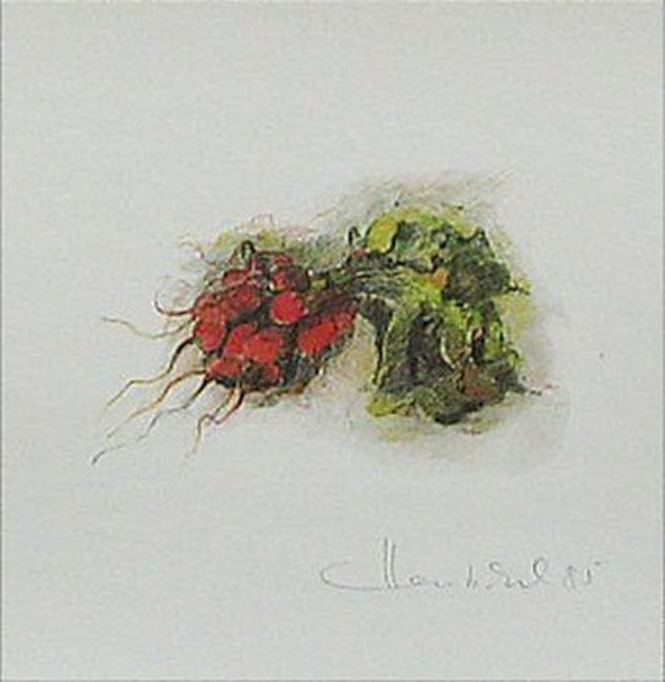 Hentschel: Lithografie, Nature II kopen? Bied vanaf 6!