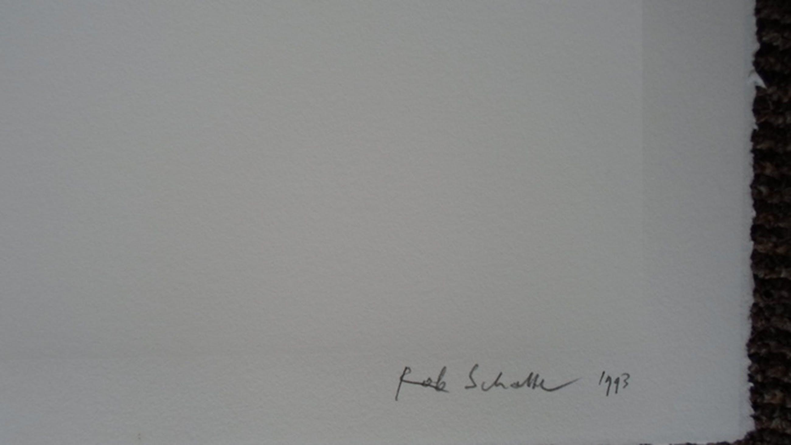 Robe Scholte: Polkadot kopen? Bied vanaf 145!