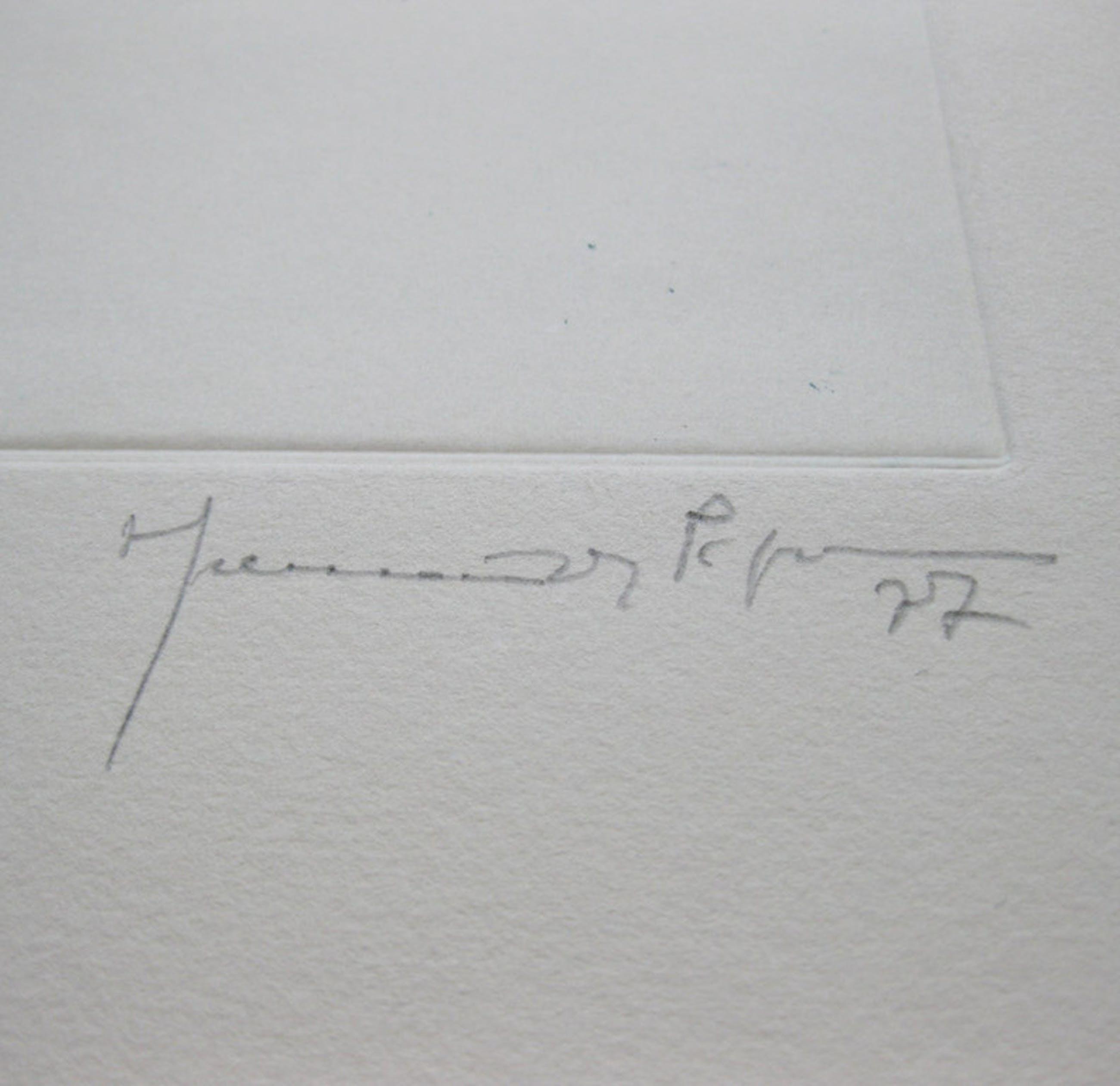 "Joan Hernandez Pijuan "" Color Per A un Paisatge "" Kleuren ets - 1977 kopen? Bied vanaf 295!"