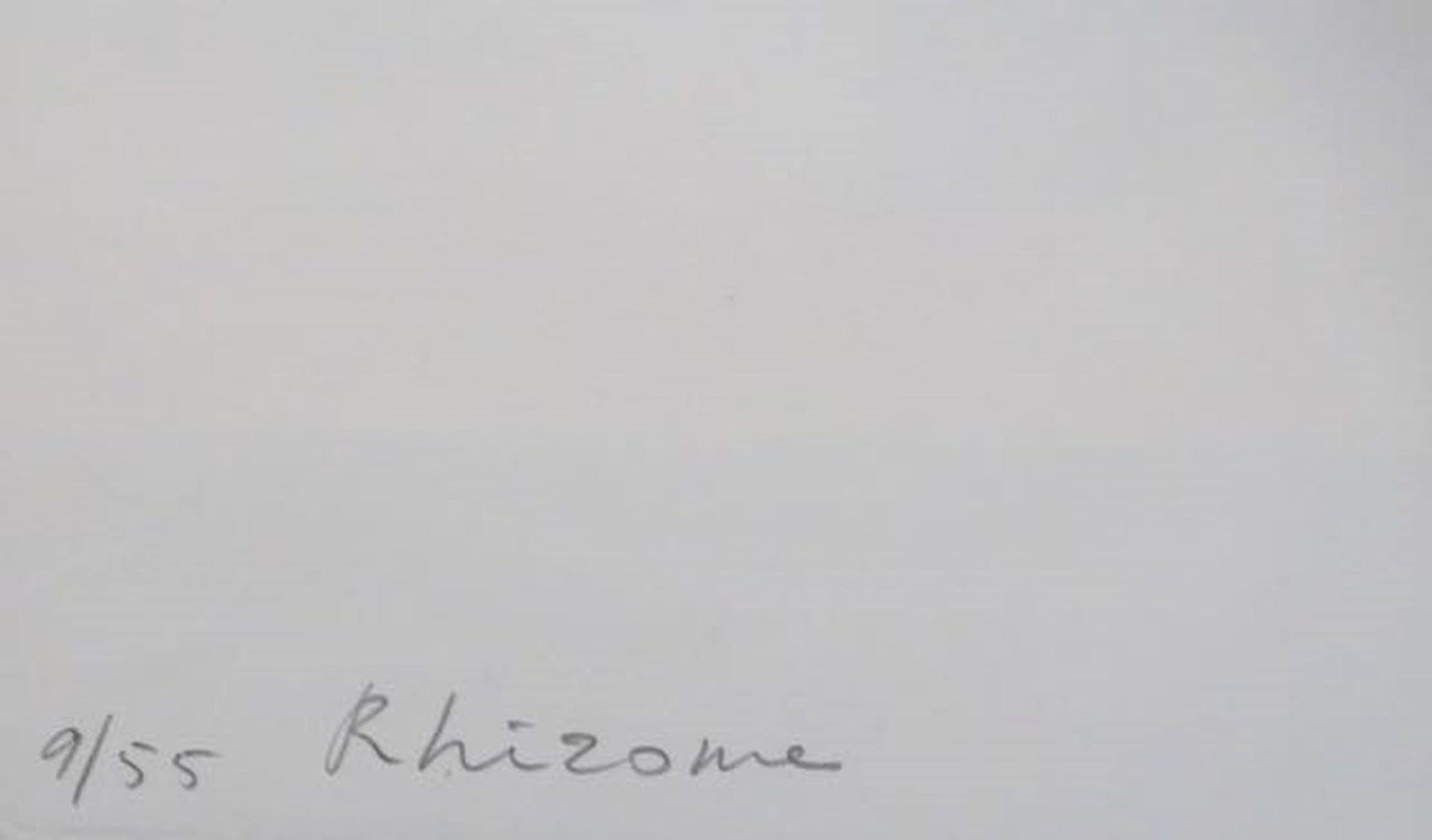 Sjoerd Buisman: Litho, Rhizome - Ingelijst kopen? Bied vanaf 50!