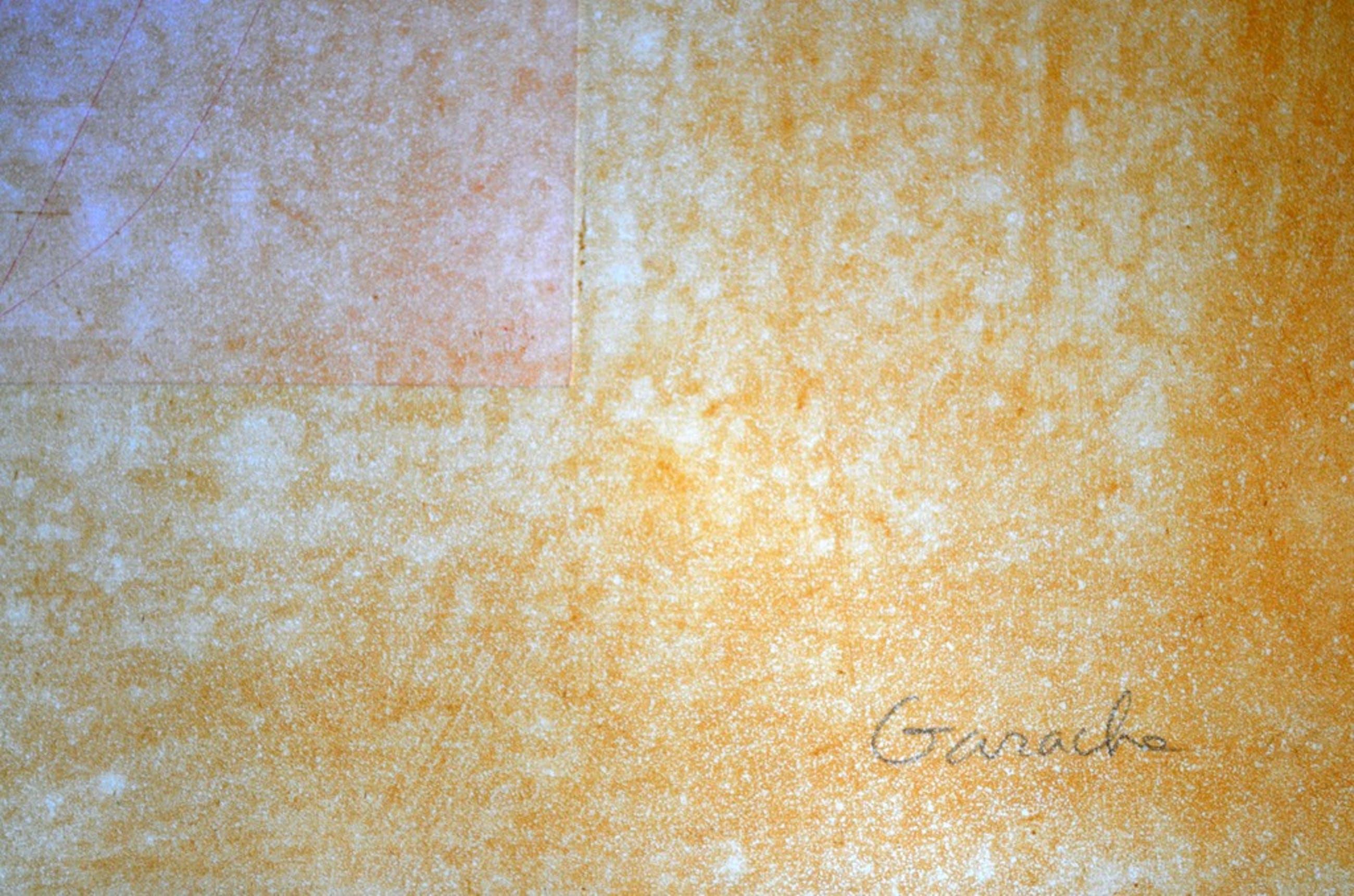 Claude Garache - Grote kleurenets-aquatint - gesigneerd - opl. 35 - 1989 kopen? Bied vanaf 175!