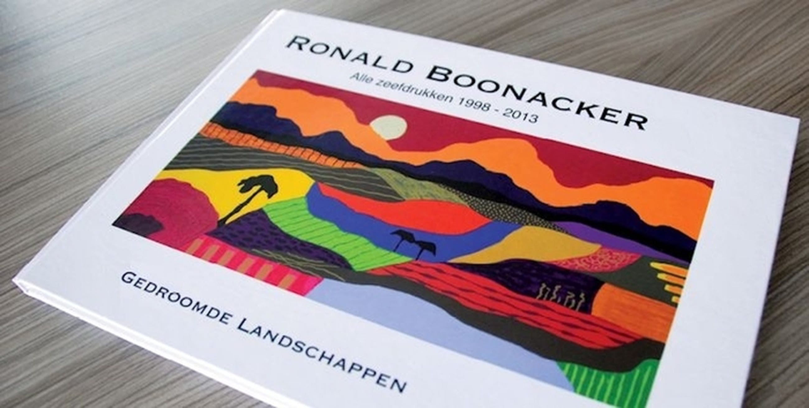 Ronald Boonacker BOEK Gedroomde Landschappen kopen? Bied vanaf 1!