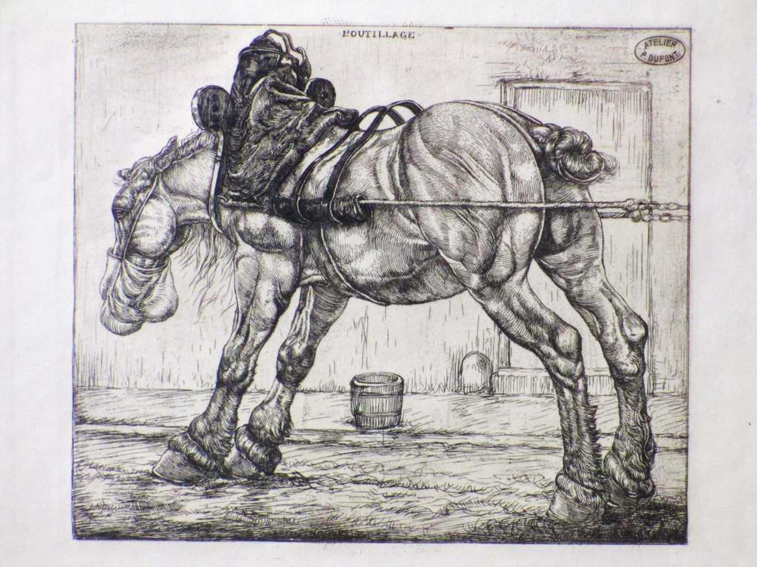 Pieter Dupont, Rustend Trekpaard, Ets kopen? Bied vanaf 70!