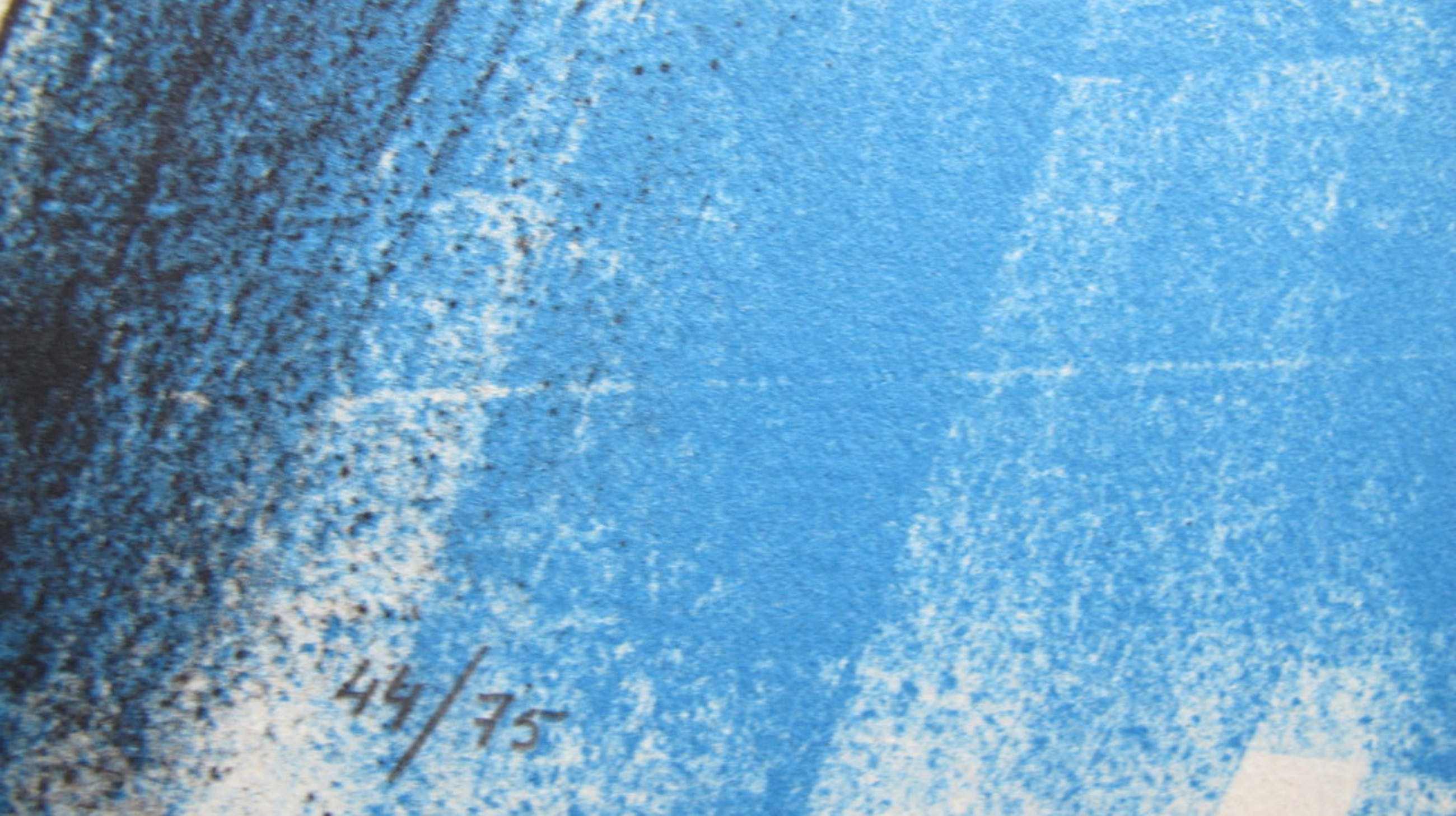 """""""Zwembad"""" - kleurenlithografie, 2005, 75 ex. kopen? Bied vanaf 39!"""