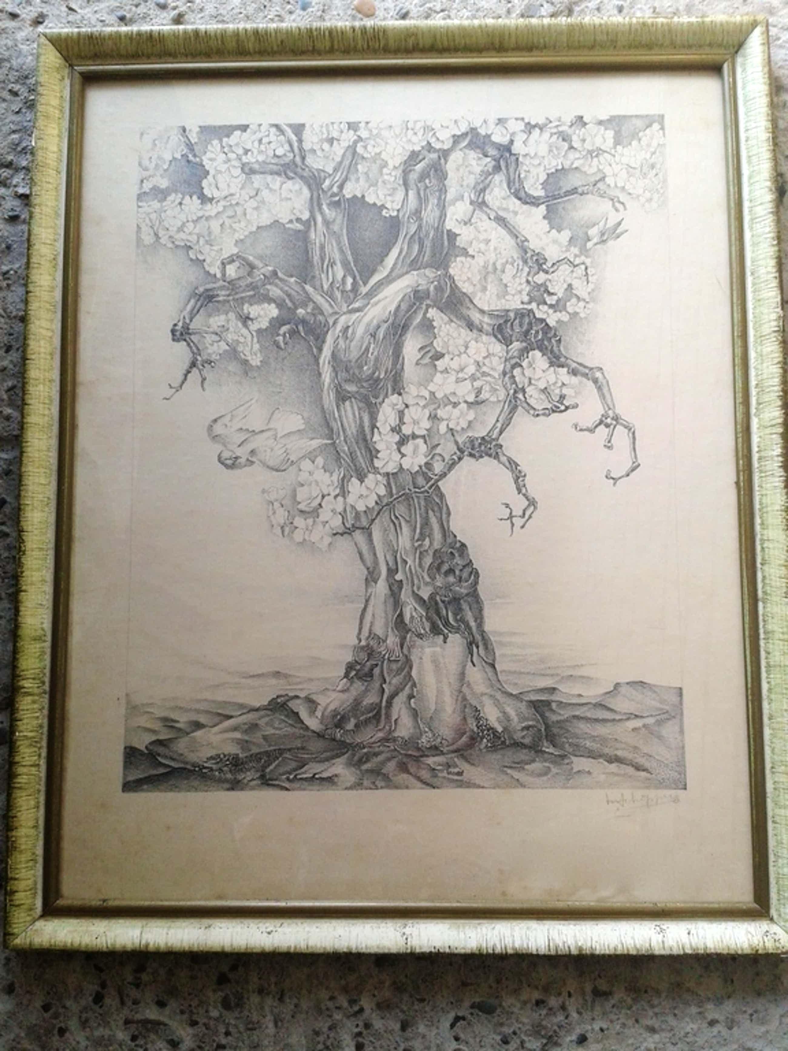 Prachtige oude ets MARINUS SCHIPPER 1897-1987 -54 x 44 cm- hand gesigneerd   kopen? Bied vanaf 55!