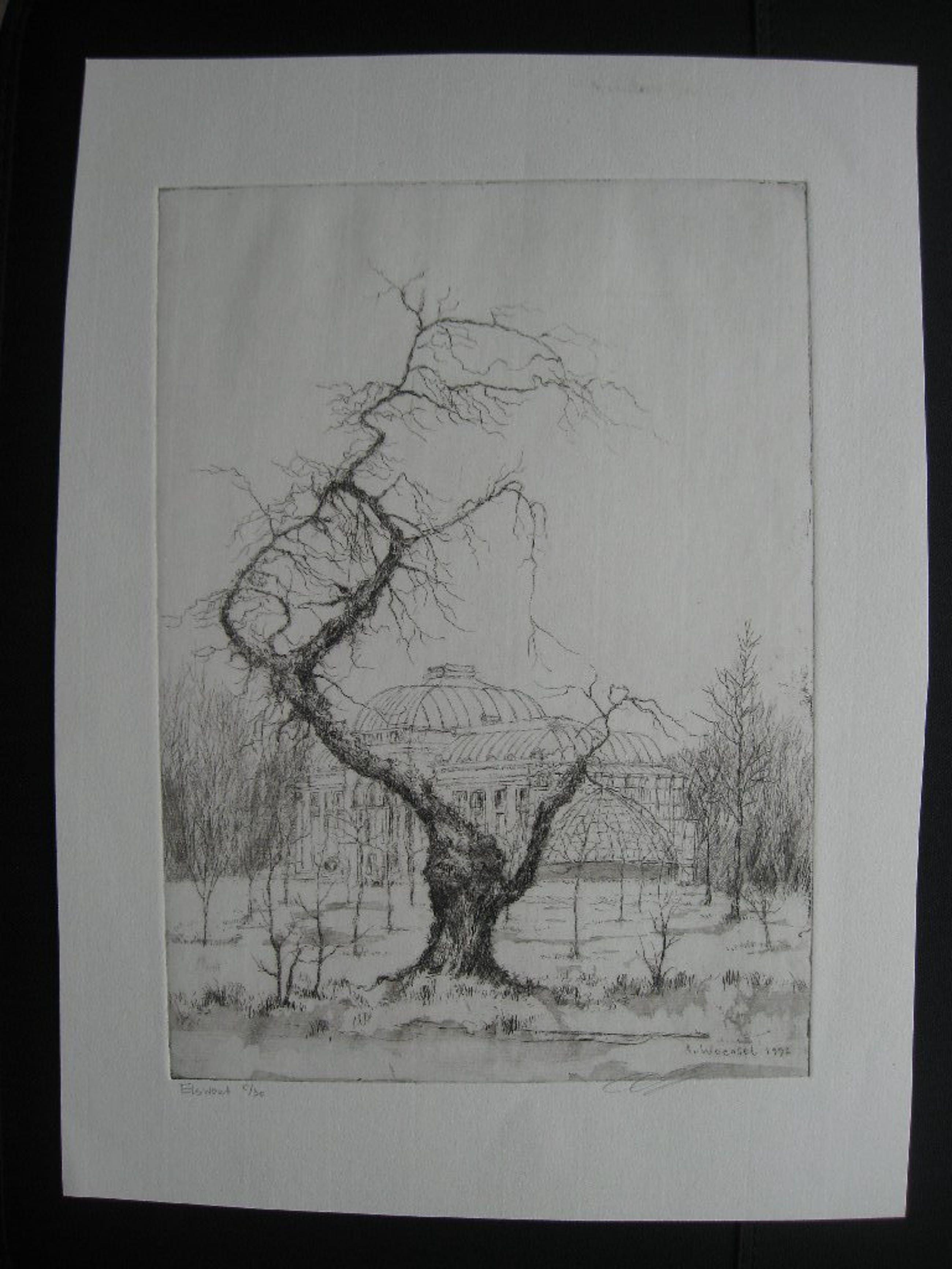 Aart van Woensel, ets, Elswout met zicht op de Orangerie 1992, vijfde van dertig kopen? Bied vanaf 15!