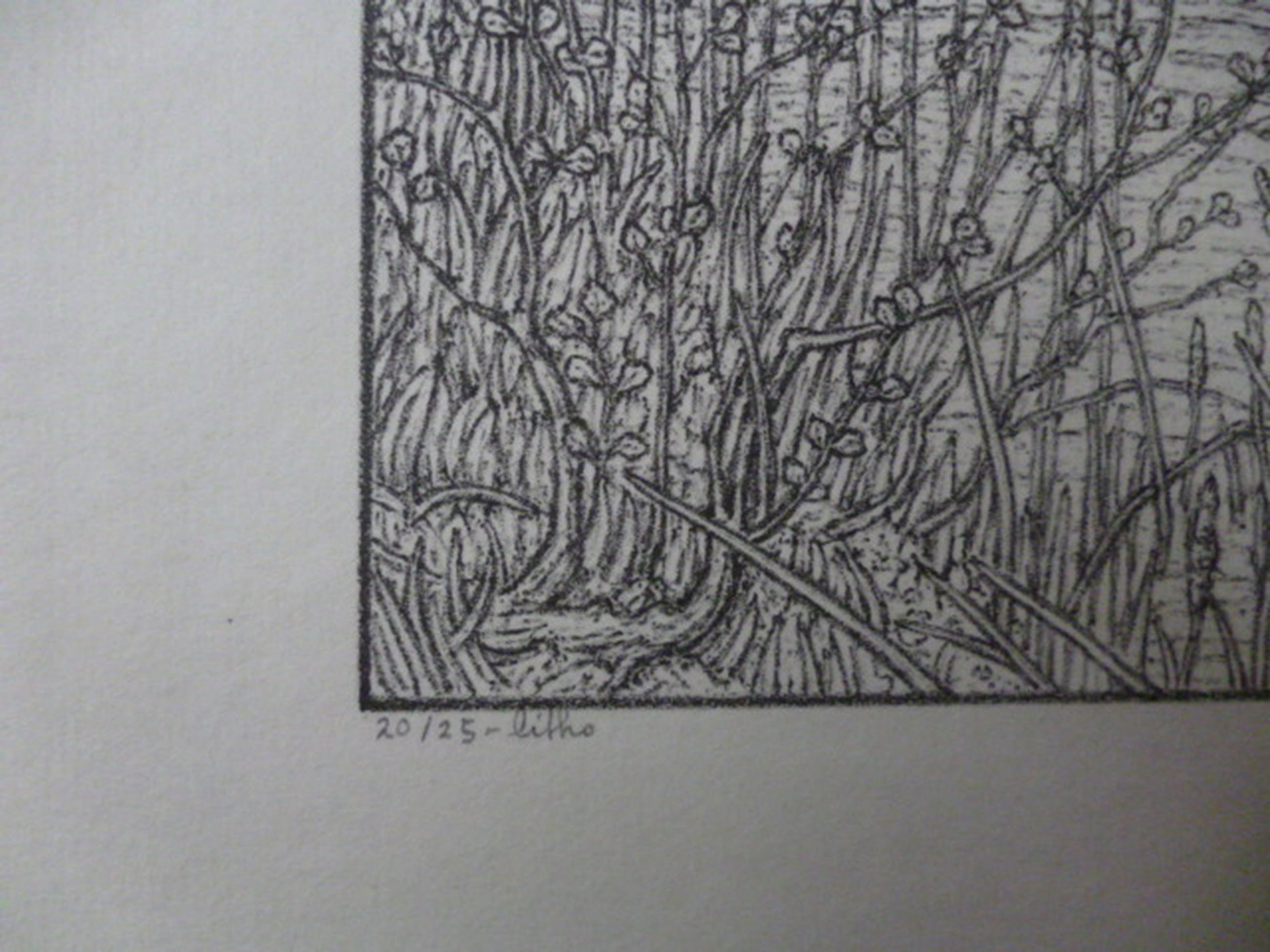 Rudolf Bremmer - litho - Tuin  met tuinder kopen? Bied vanaf 40!