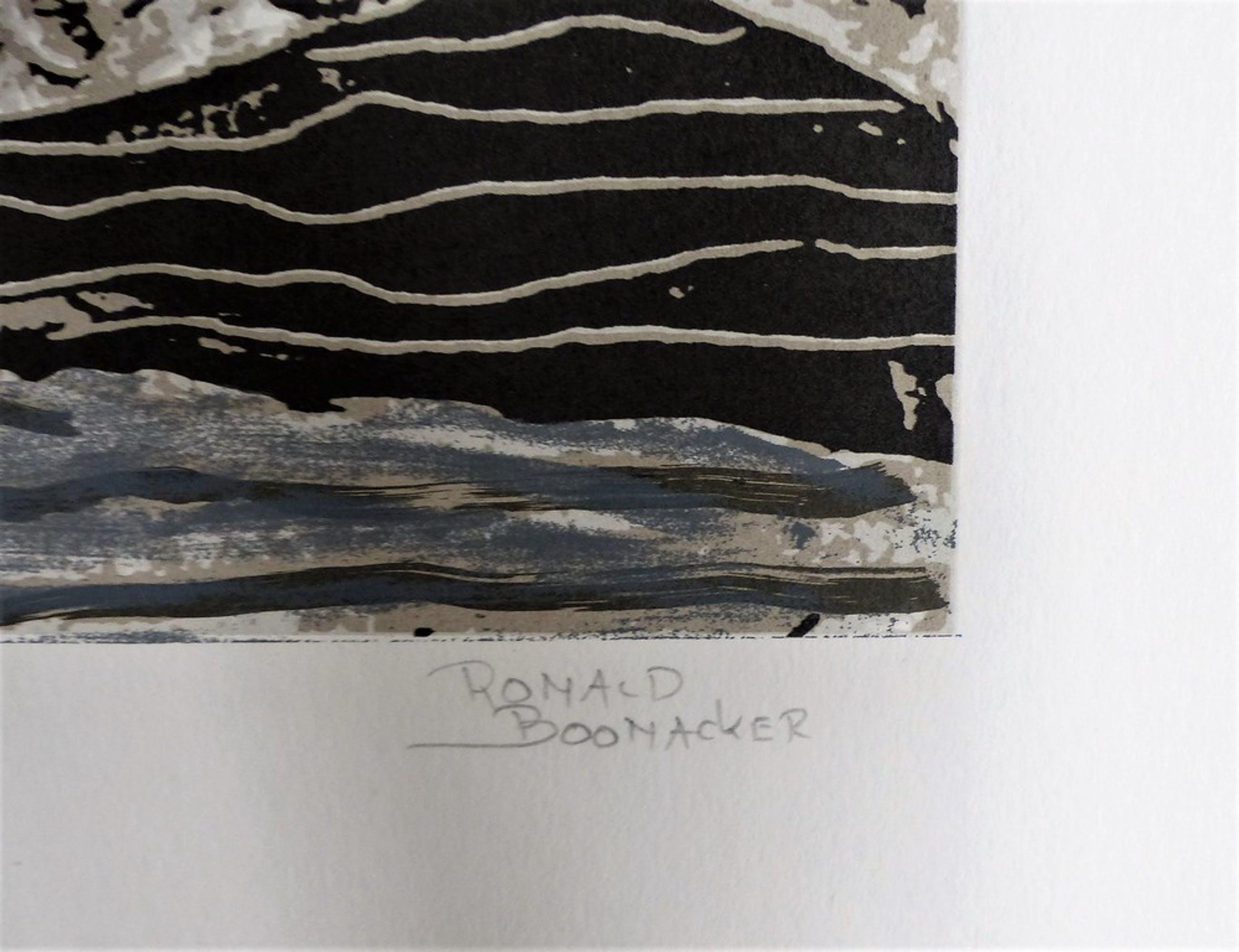 Ronald Boonacker,Zeefdruk op papier,Night sky 1,Handgesigneerd. kopen? Bied vanaf 60!