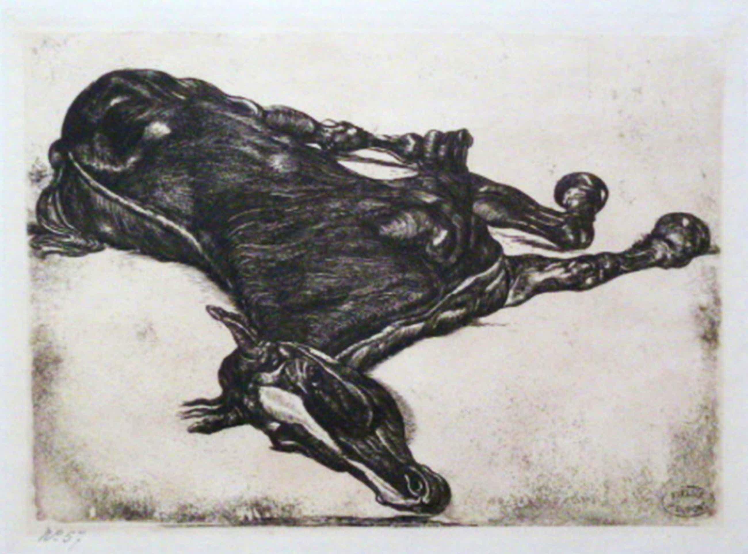 Laatste keer! Pieter Dupont: Liggend paard, ets, 1900  kopen? Bied vanaf 50!