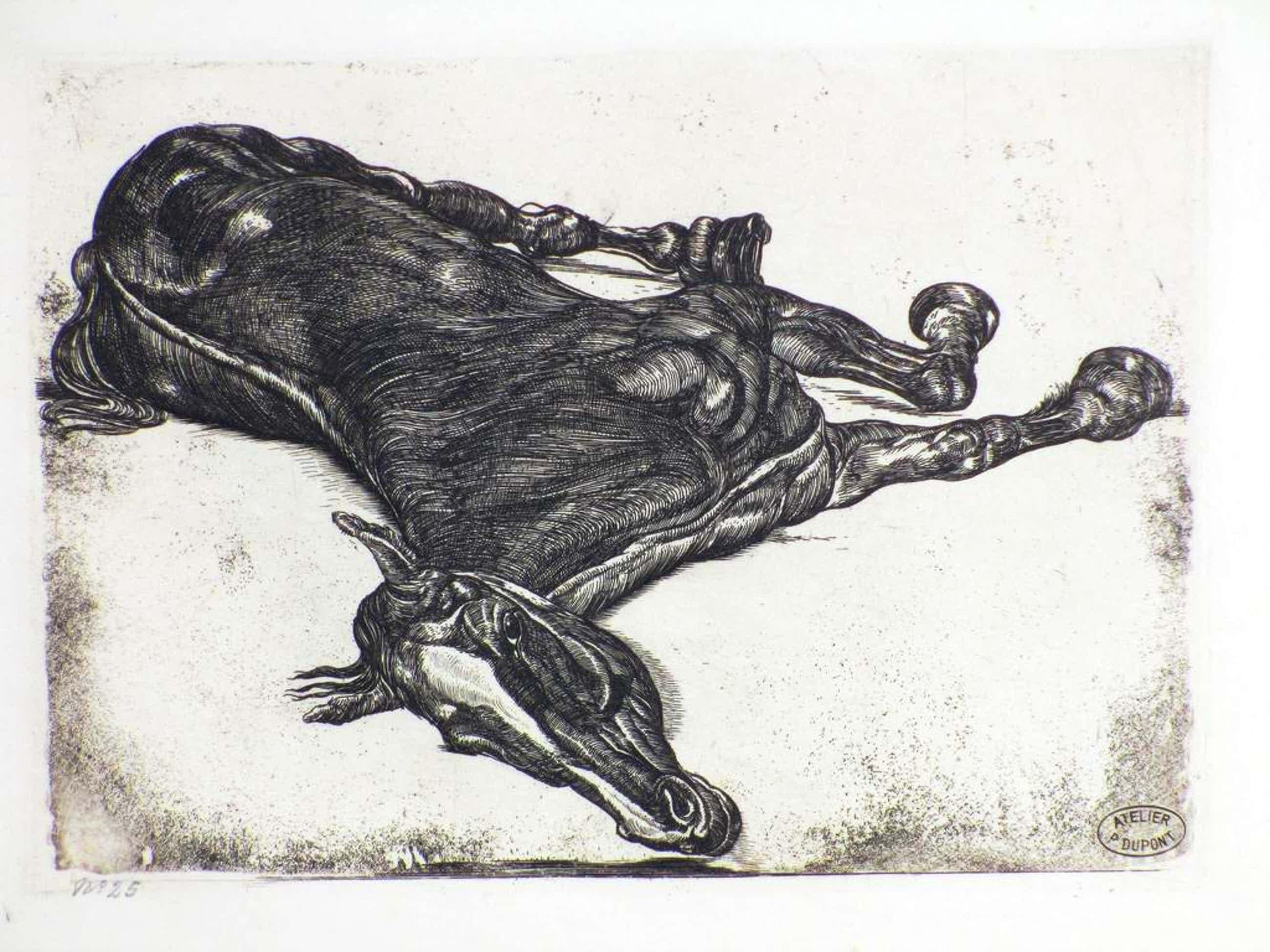 Pieter Dupont, Het doode paard, Ets op koper kopen? Bied vanaf 115!