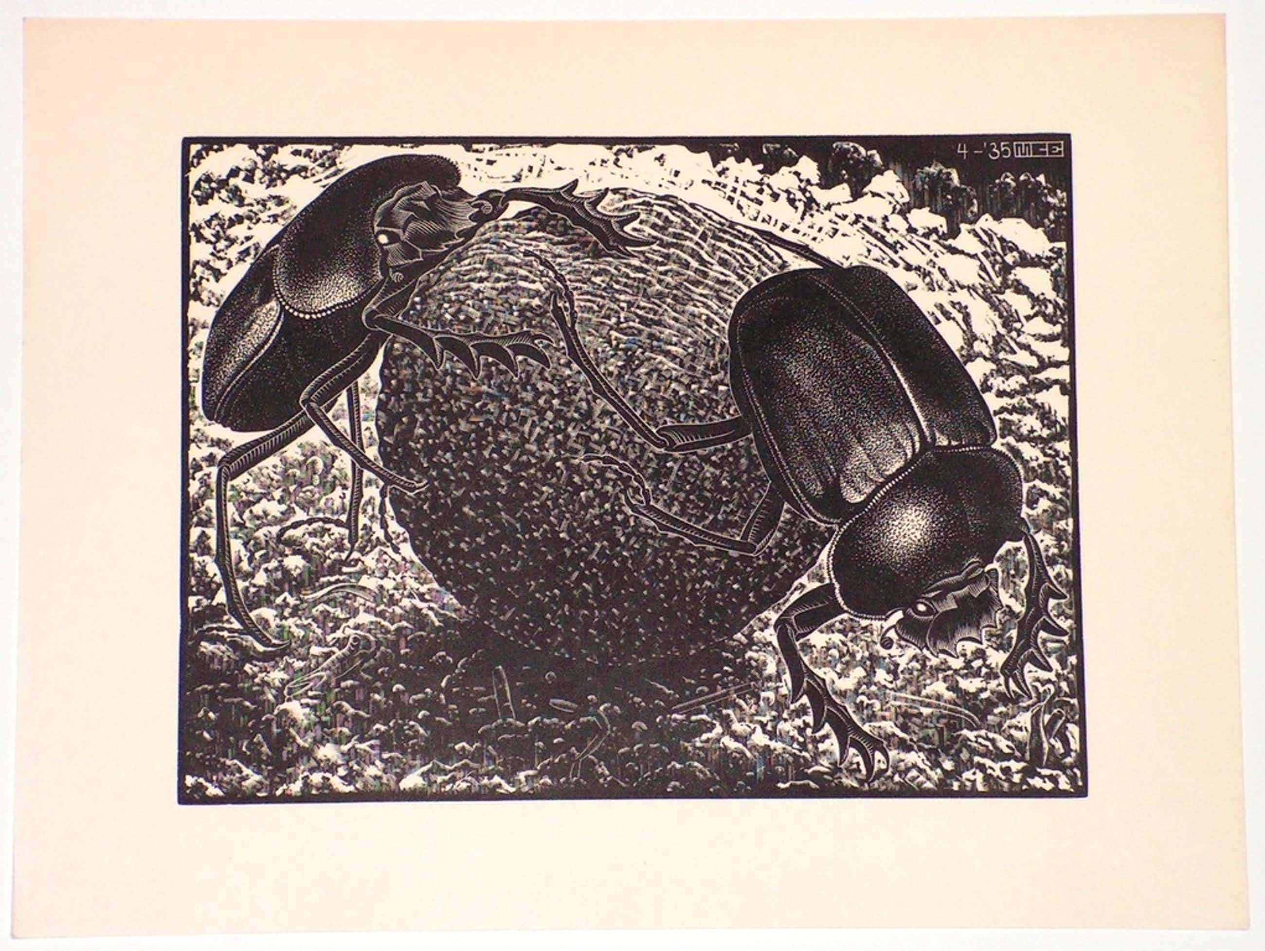 MC Escher, ORIGINELE houtgravure, 1935. Scarabeeën kopen? Bied vanaf 1150!