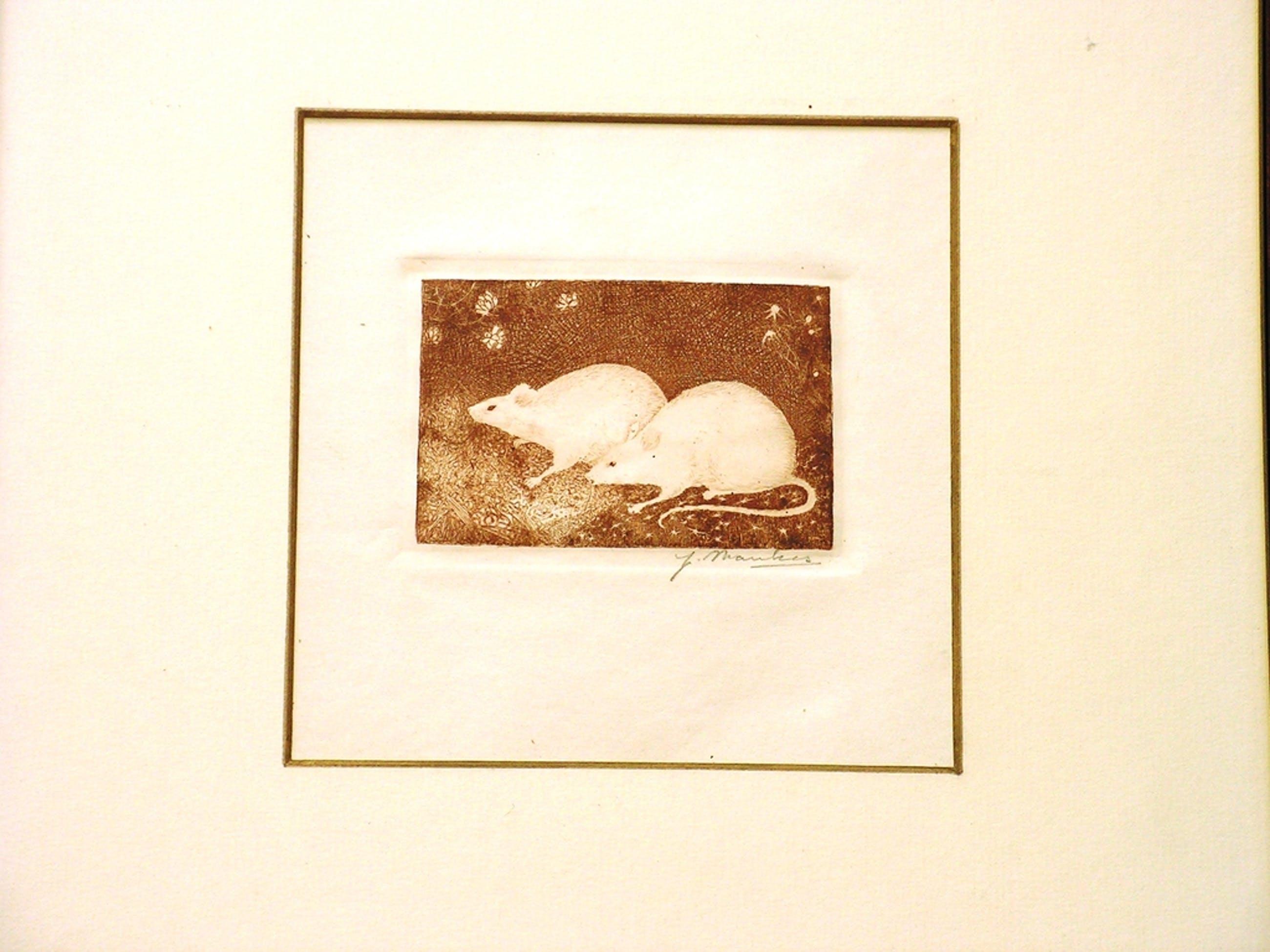 Jan Mankes - 'twee muisjes'  -  ets  -  gesigneerd - 1916 kopen? Bied vanaf 700!