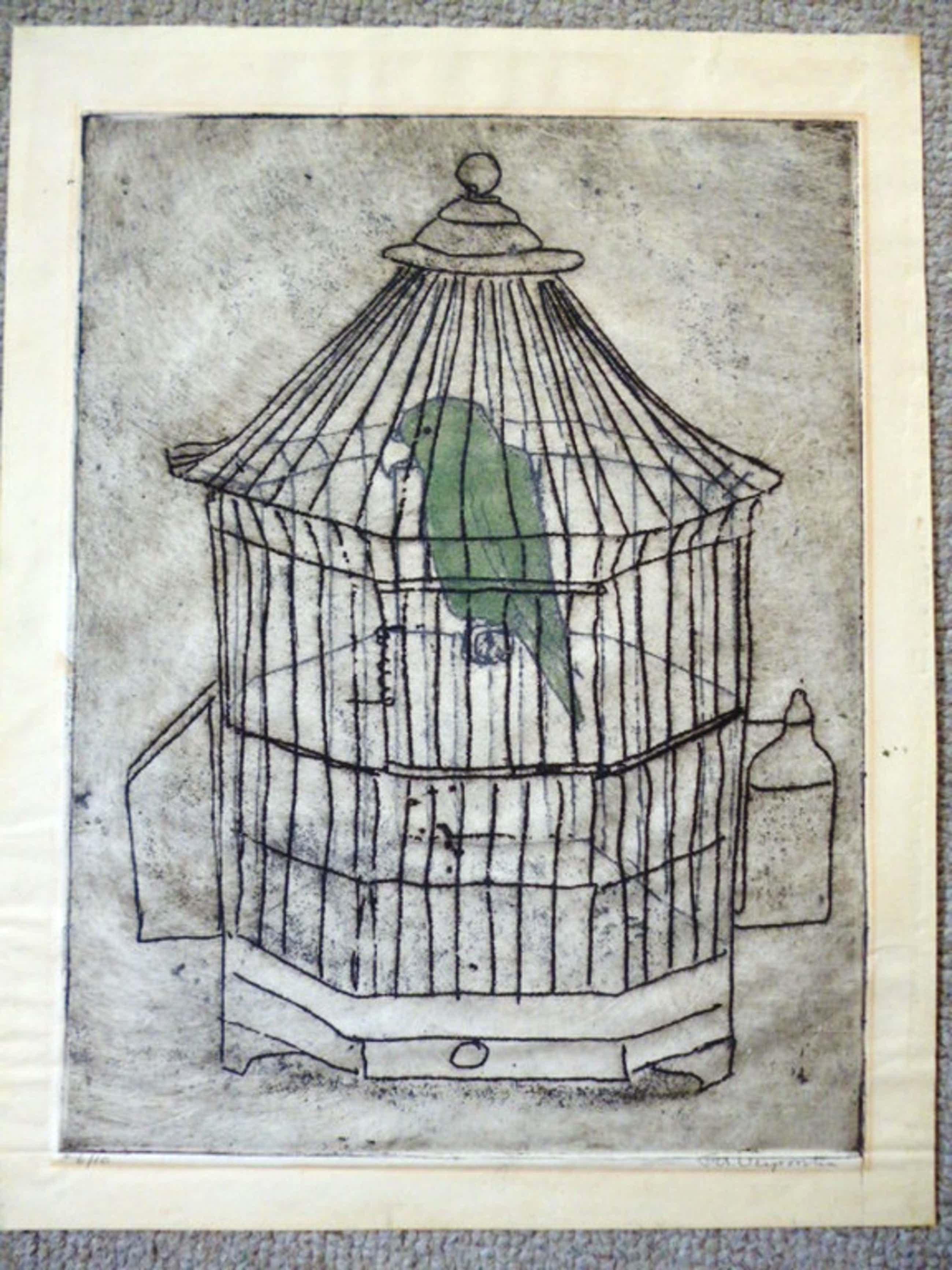 Frans Verpoorten - kleurenets - De groene ara kopen? Bied vanaf 55!