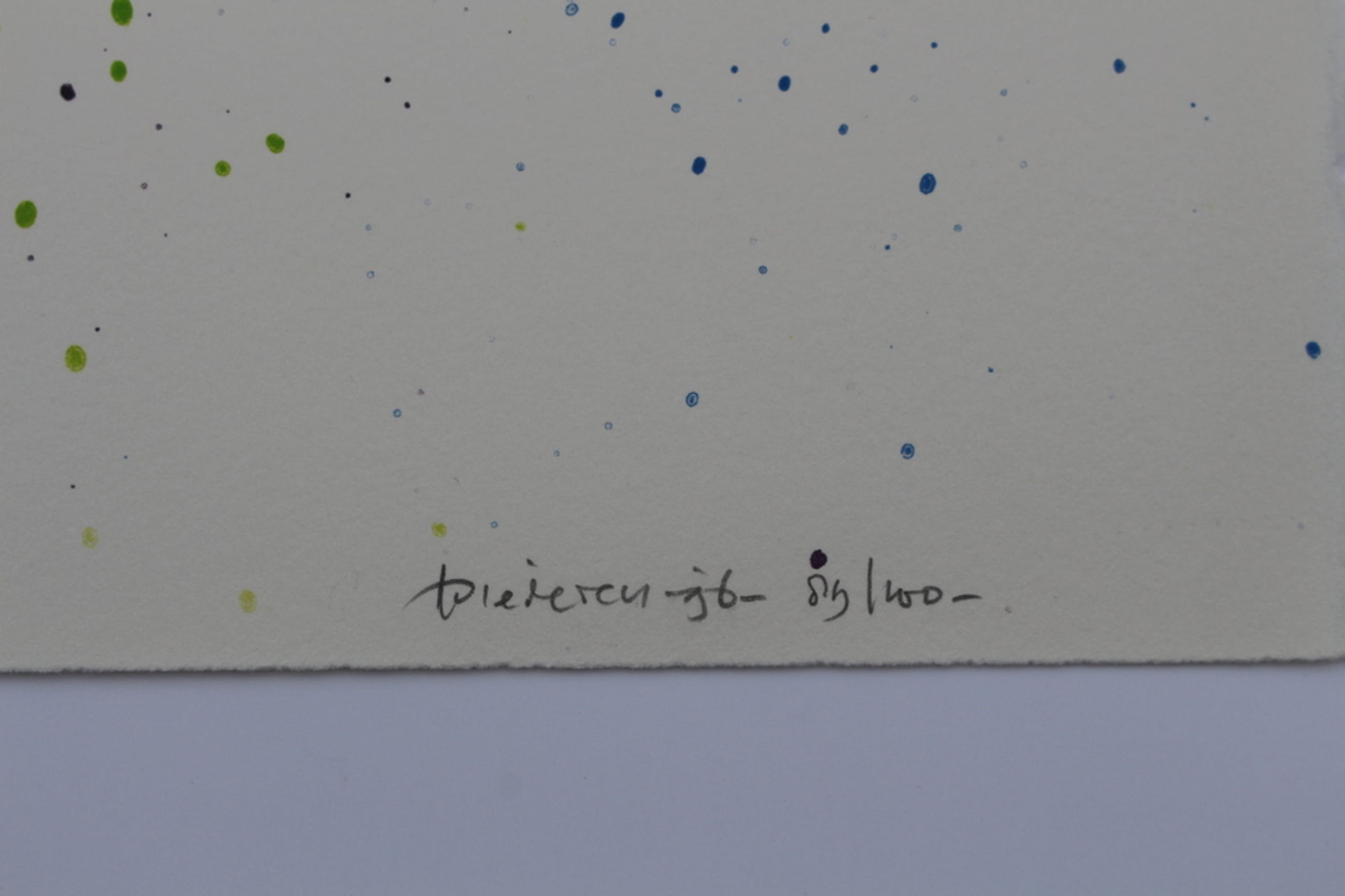 Jef Diederen (1920-2009)- gesigneerd litho - opl. 100 ex. -1996 -galerie Schoots kopen? Bied vanaf 40!