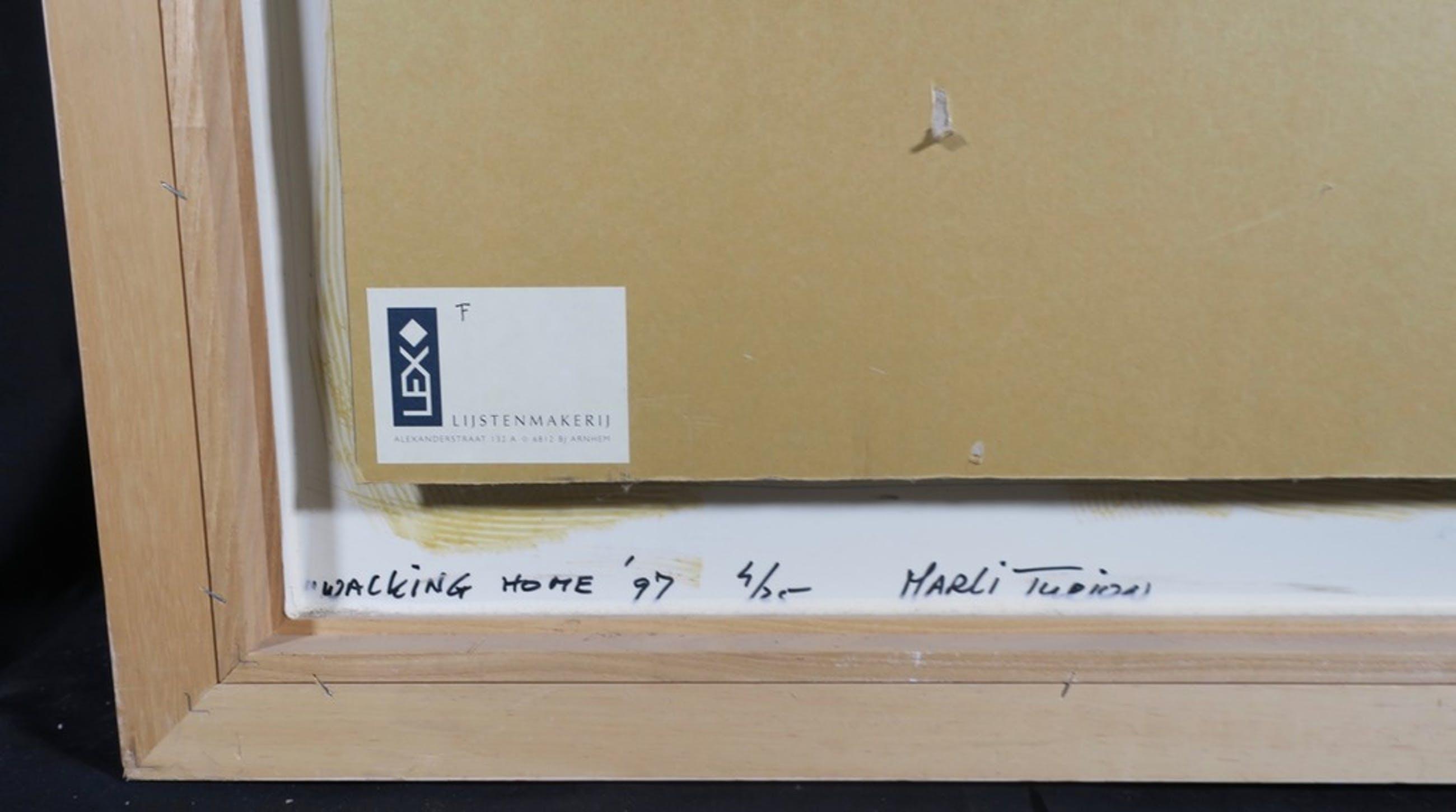 Marli Turion: C-print op dibond, Walking home - Ingelijst (Groot!) kopen? Bied vanaf 1!