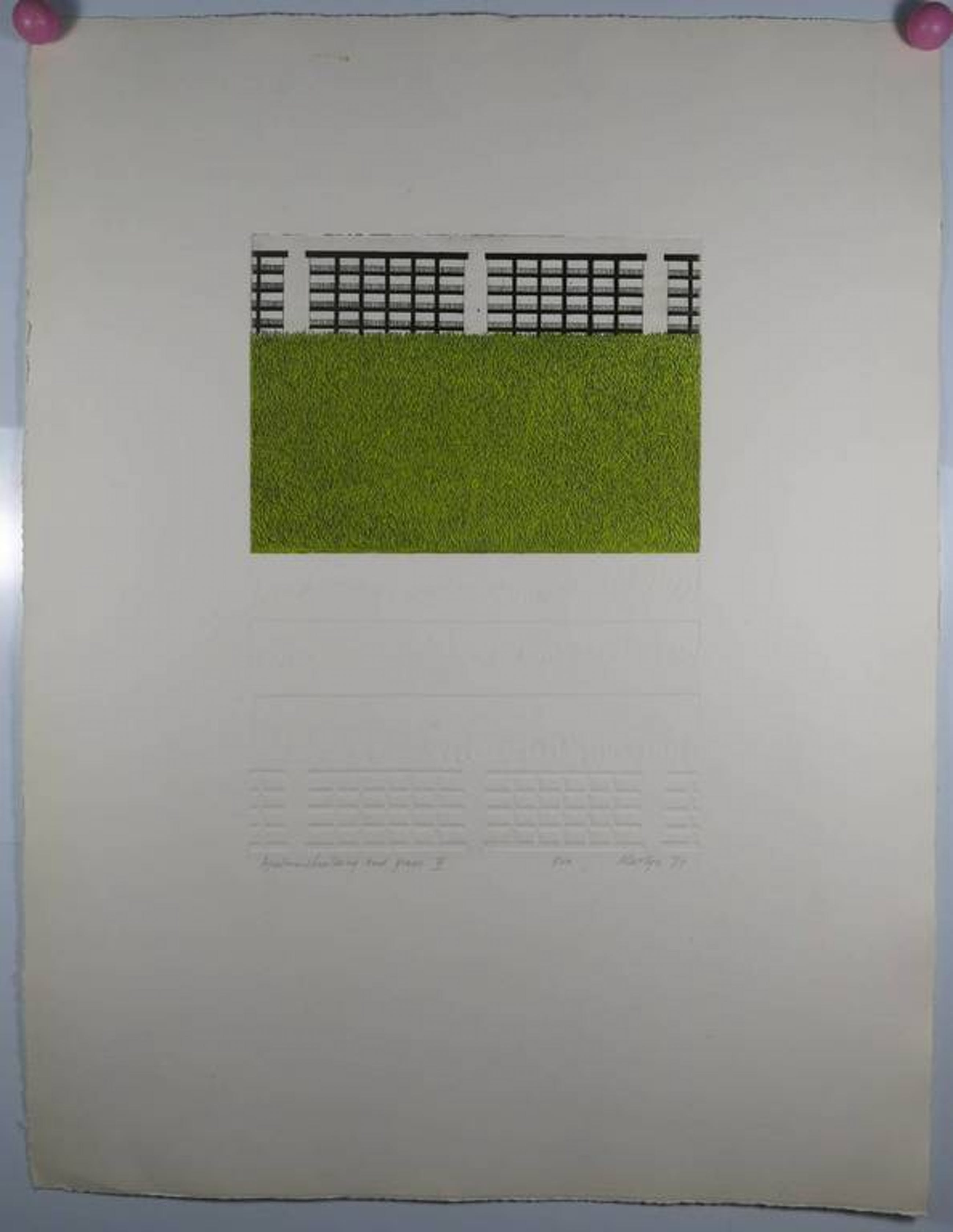 Martijn Ruiter: Ets en aquatint en reliefdruk, Apartmentbuilding and grass V kopen? Bied vanaf 1!