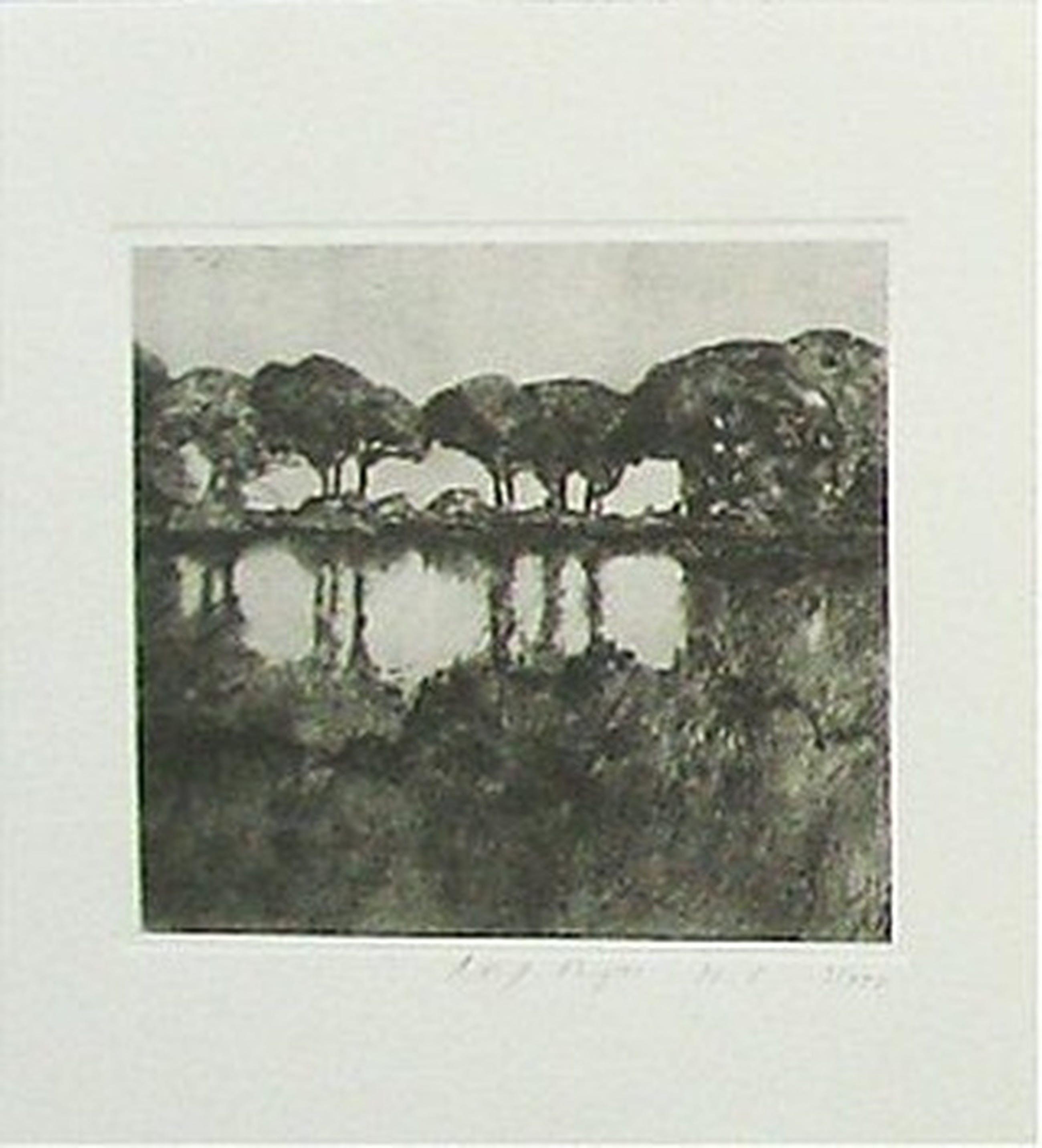 Rolf Meyn: Lithografie, Landschap met bomen kopen? Bied vanaf 5!