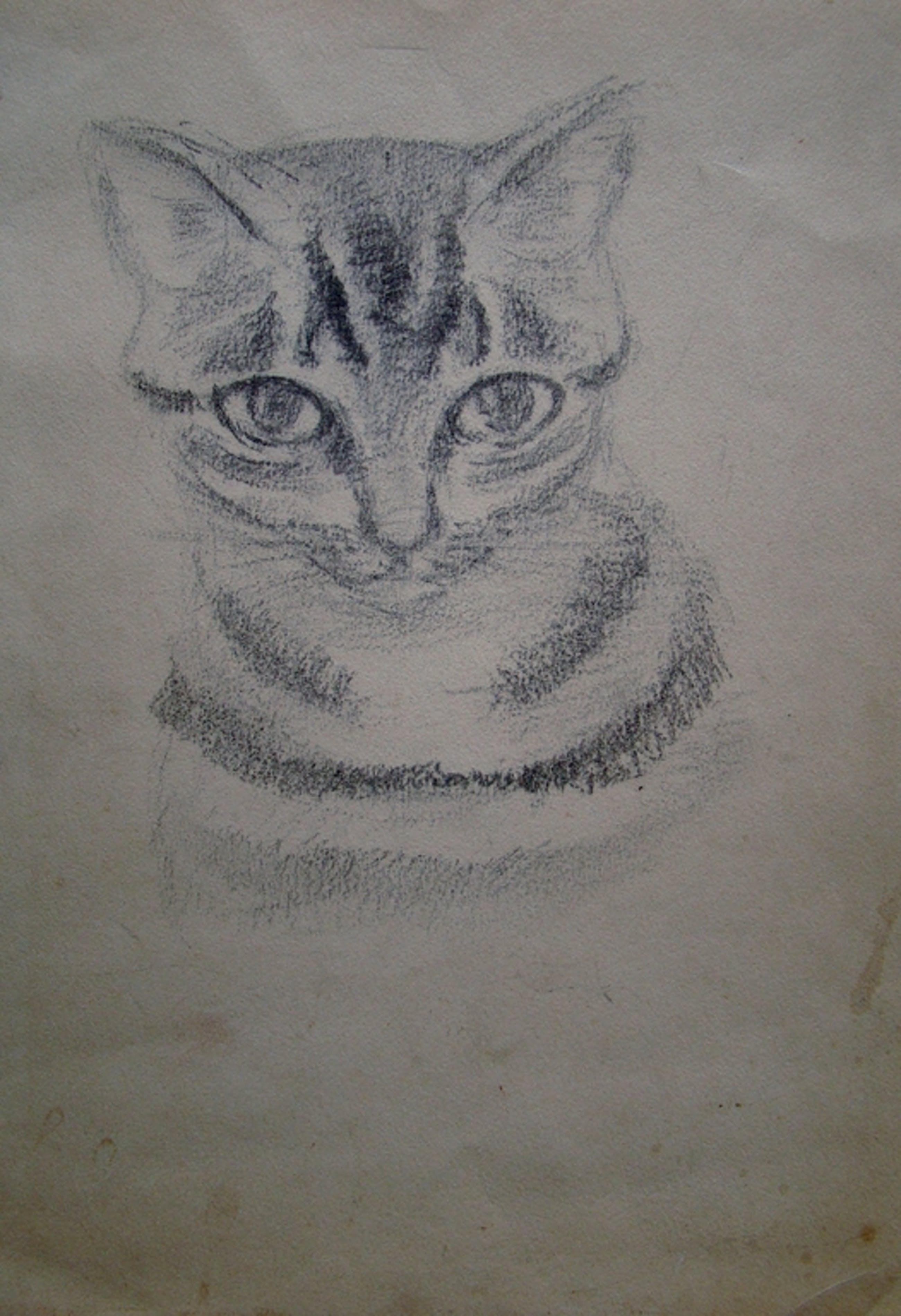 Ernst Vijlbrief (1934-2010) - tekening katje kopen? Bied vanaf 1!