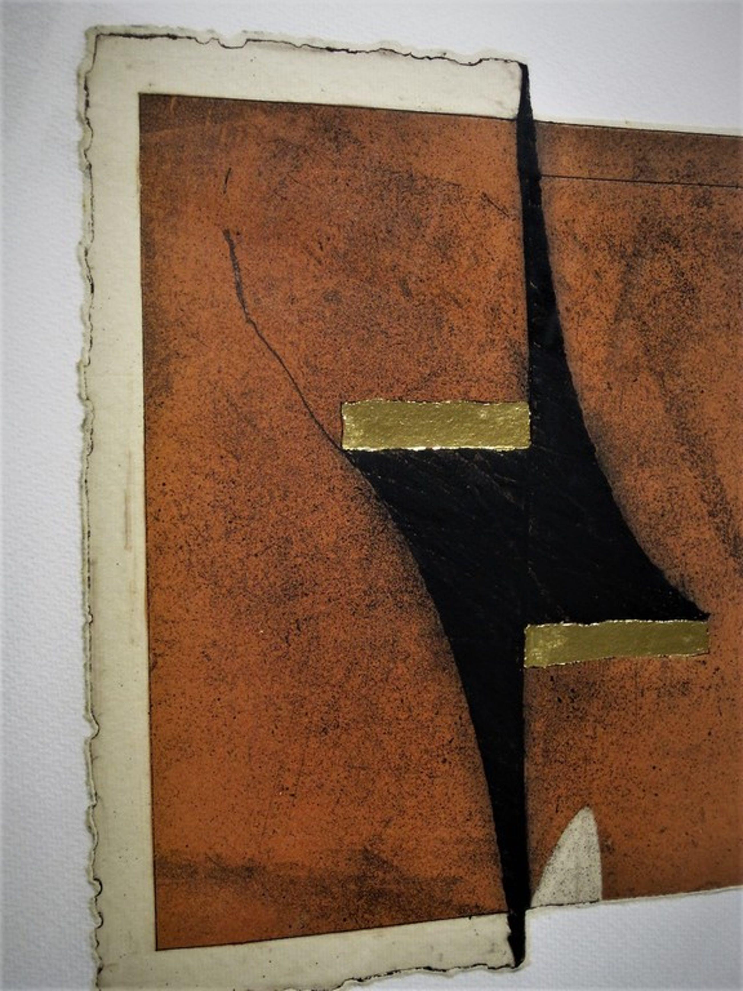 Buitengewoon Chine Collé bladgoud Diepdruk van Grafische meester Jan Naezer kopen? Bied vanaf 1!