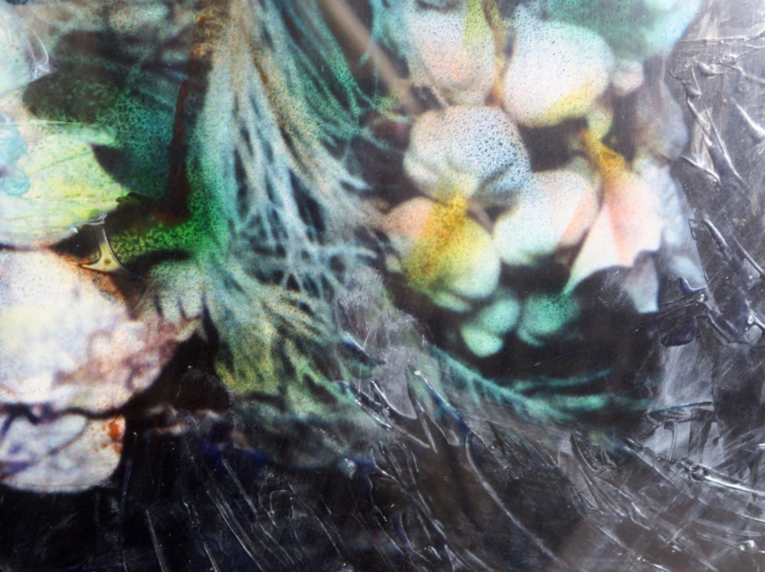 Franca Muller Jabusch: Handbewerkte foto, Fossiled memory - Ingelijst kopen? Bied vanaf 35!