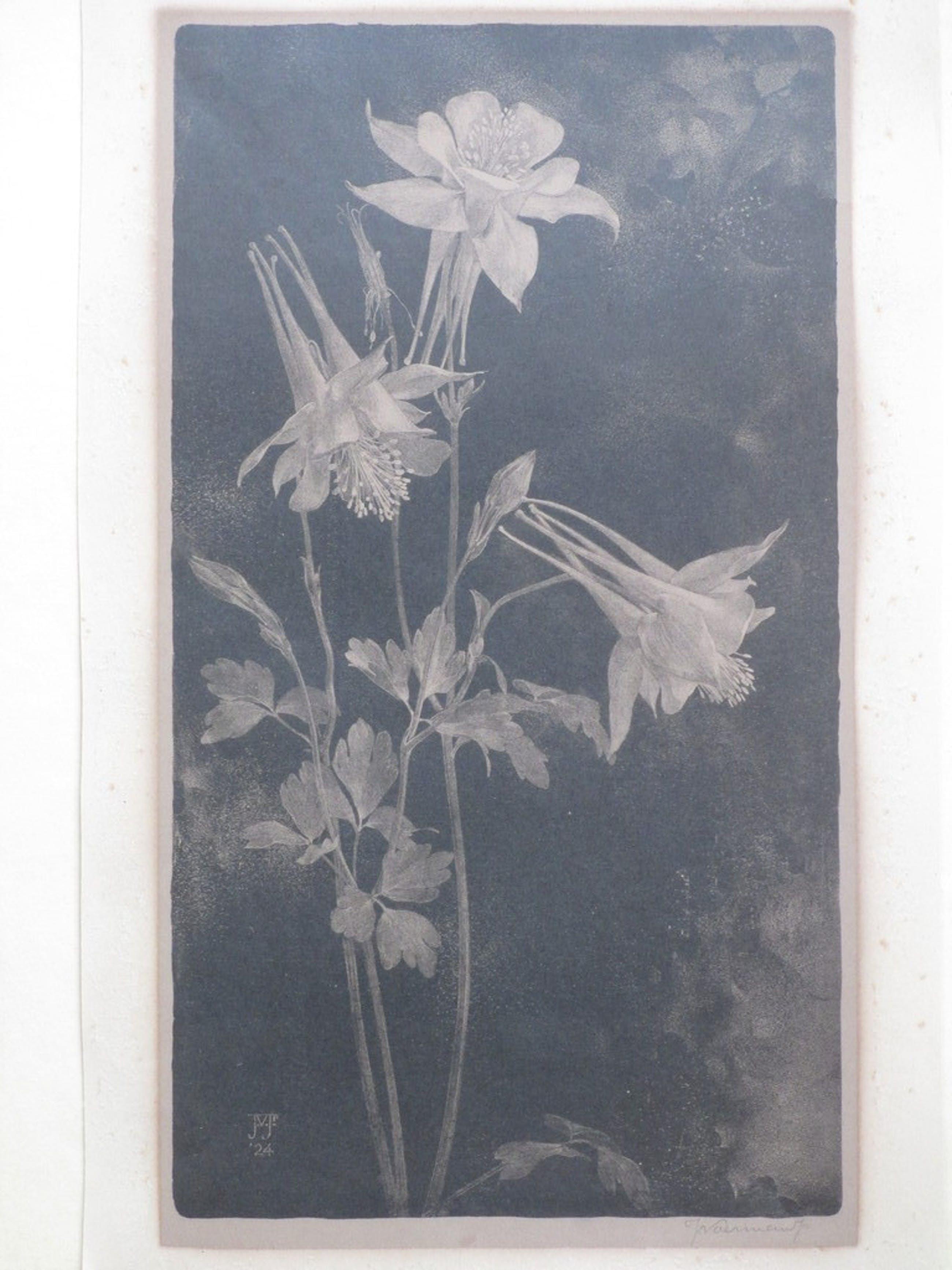 Jan Voerman Jr., Bloeiende bloemen, Litho 1924 kopen? Bied vanaf 35!
