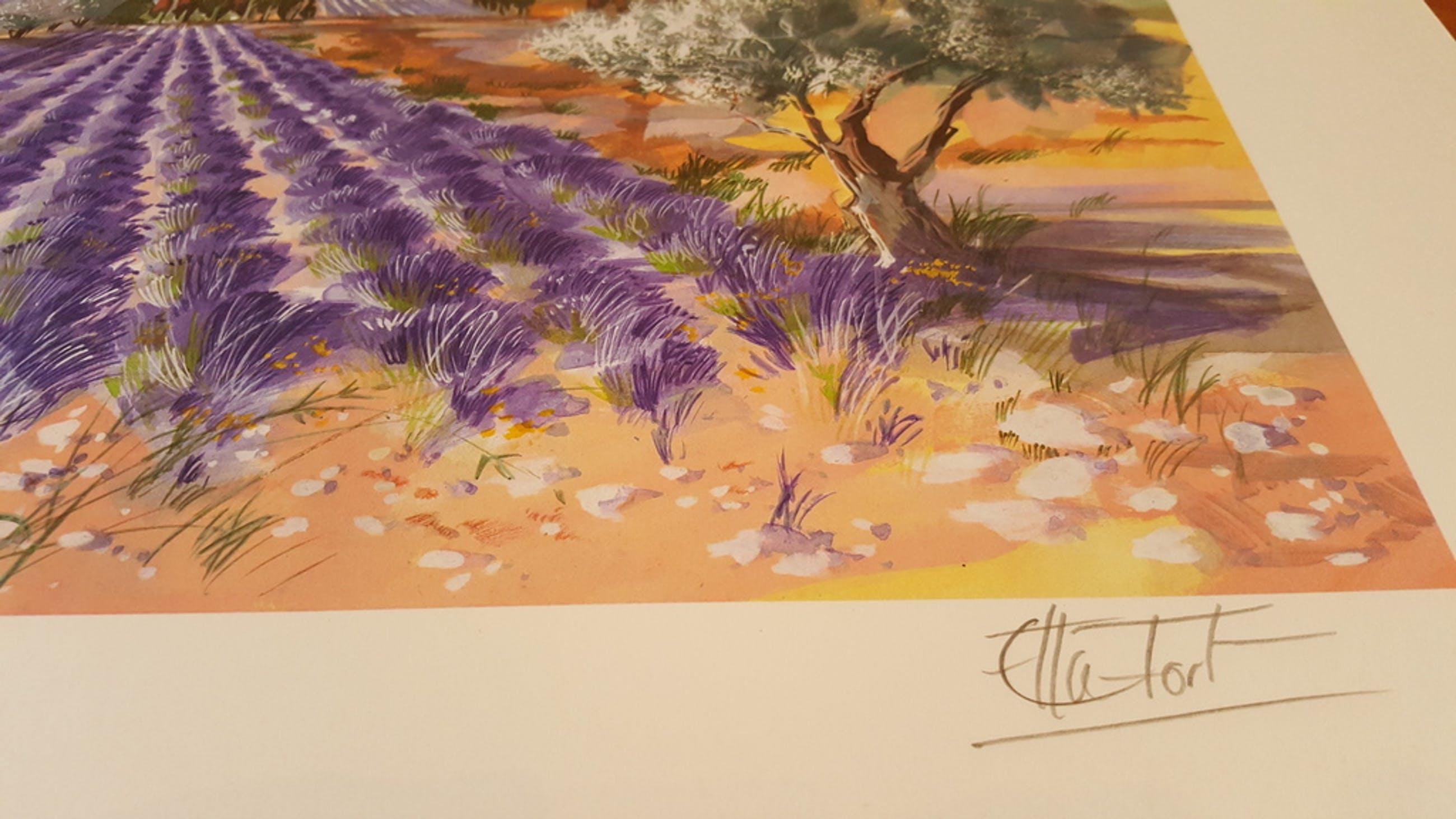 Ella Fort, Bloeiende Lavendelvelden, Schitterende Kleuren Lithografie kopen? Bied vanaf 1!