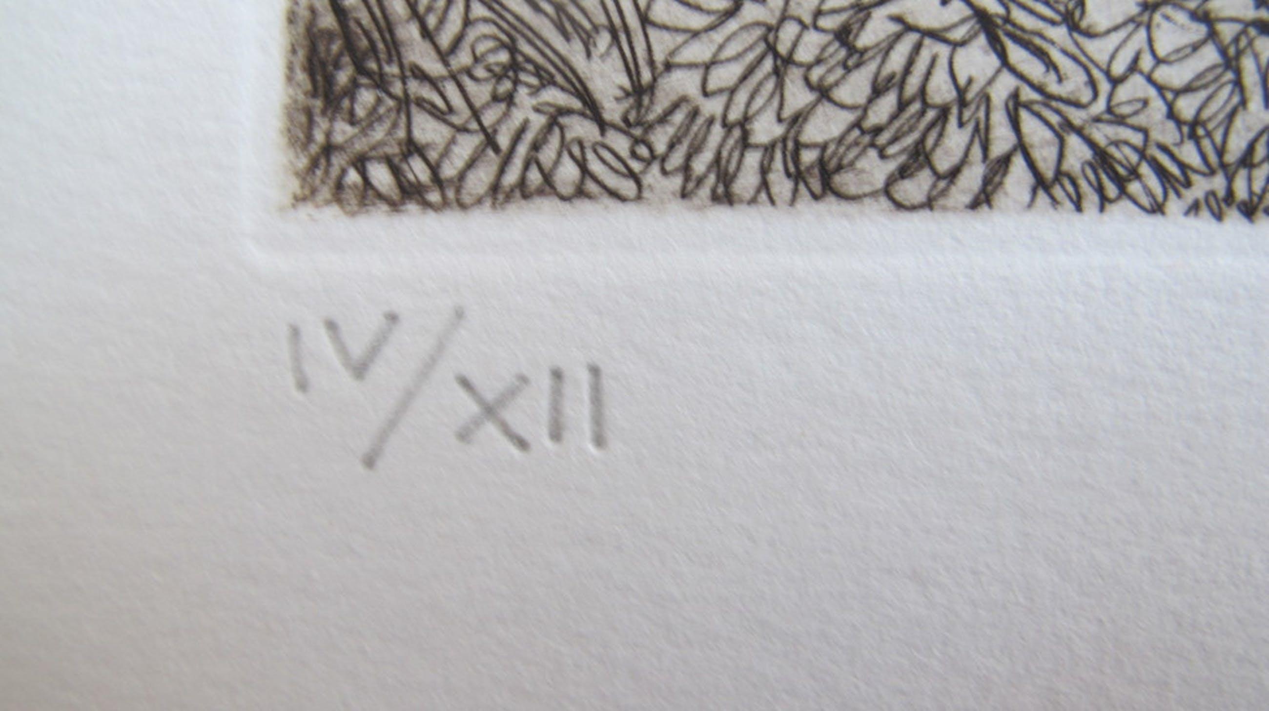 """Garbage"" - lithografie, 12 ex. kopen? Bied vanaf 29!"