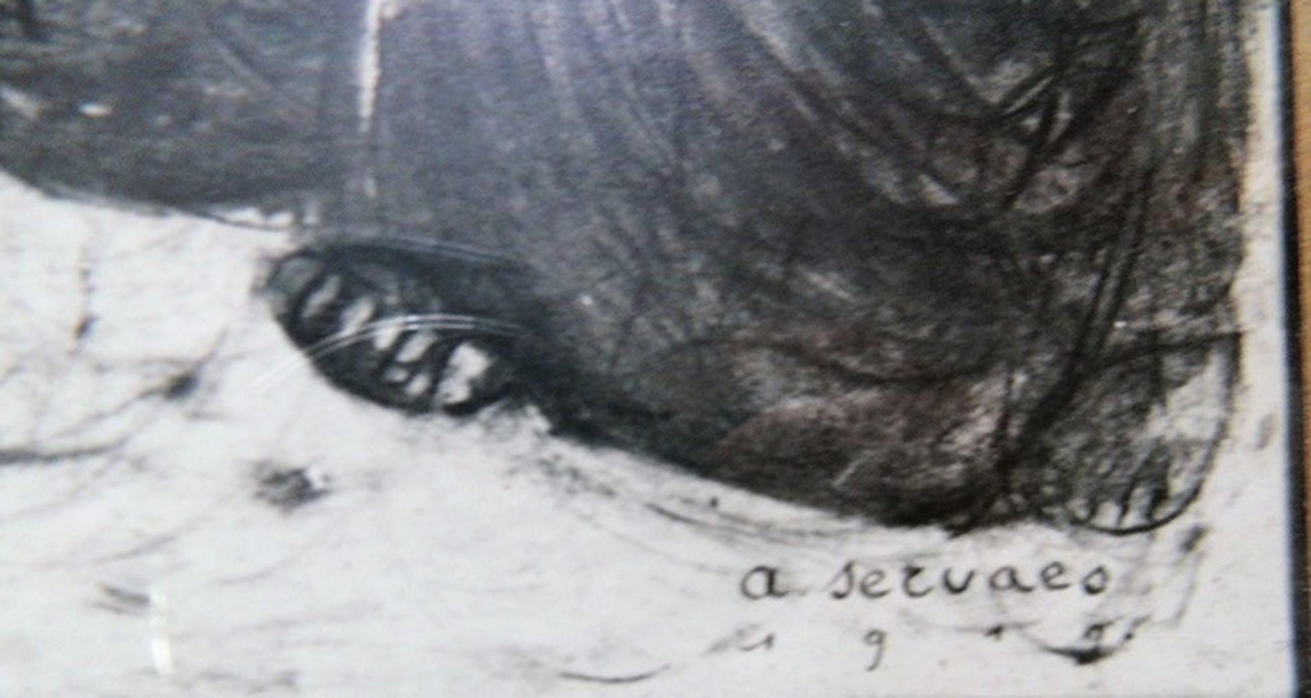 Albert Servaes--de lijkwade kopen? Bied vanaf 1!