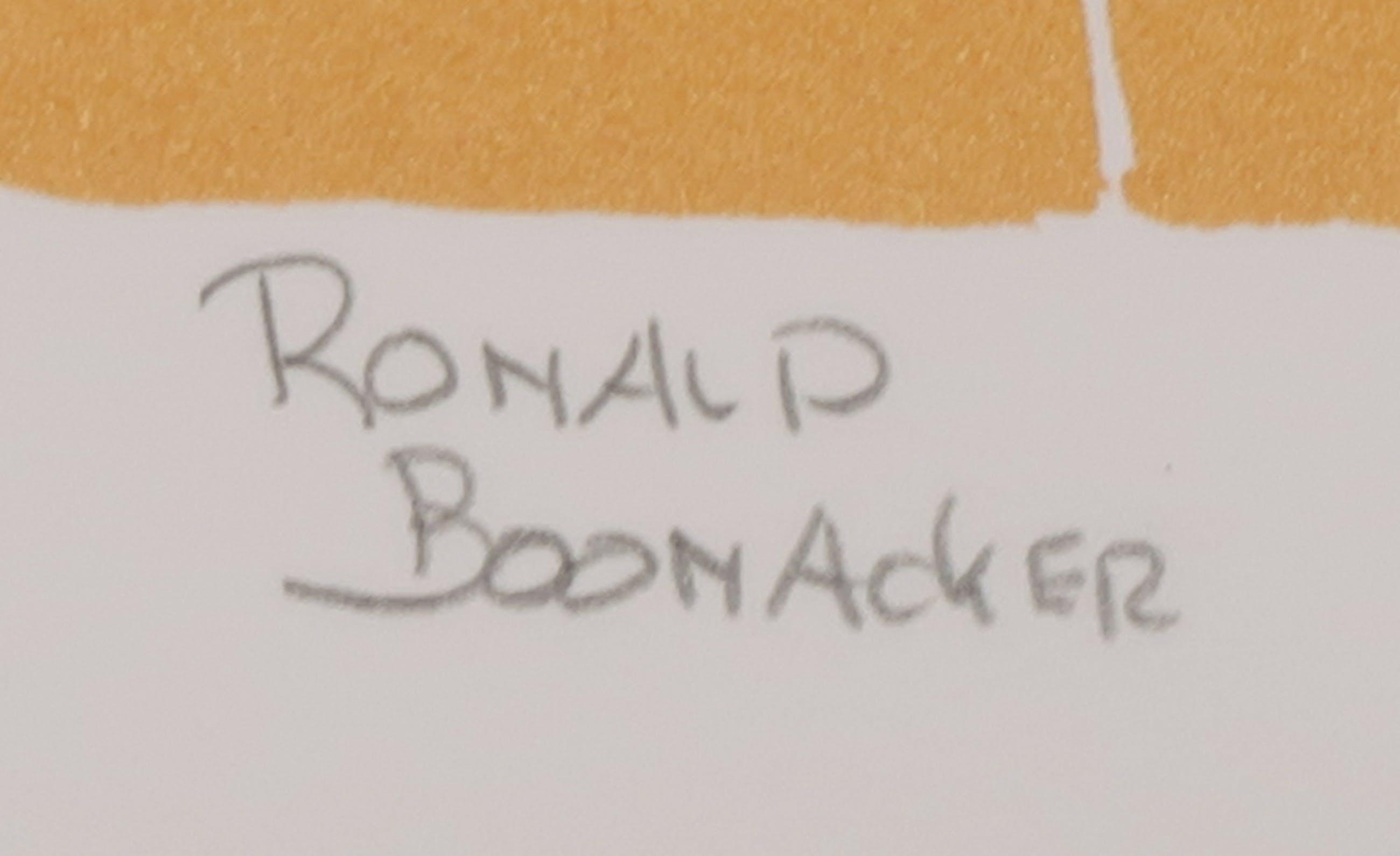 Ronald Boonacker: Zeefdruk, Monte del re kopen? Bied vanaf 1!