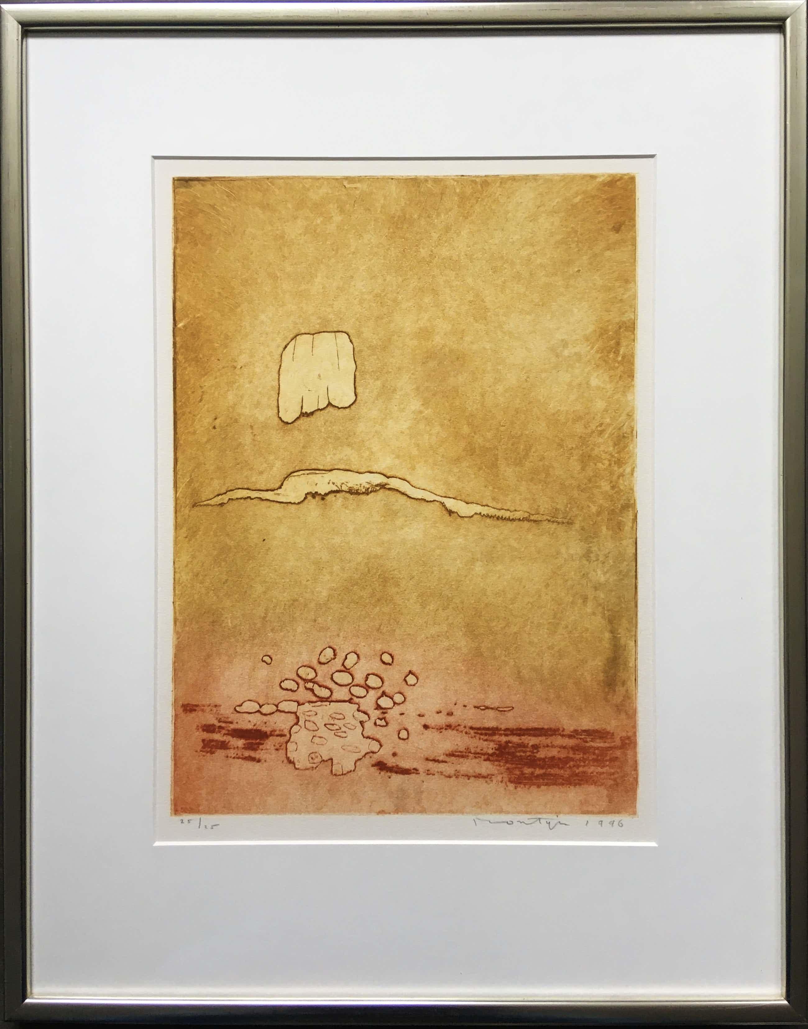 Jan Montyn - kleurenets - 1996 - oplage 25 - ingelijst kopen? Bied vanaf 135!