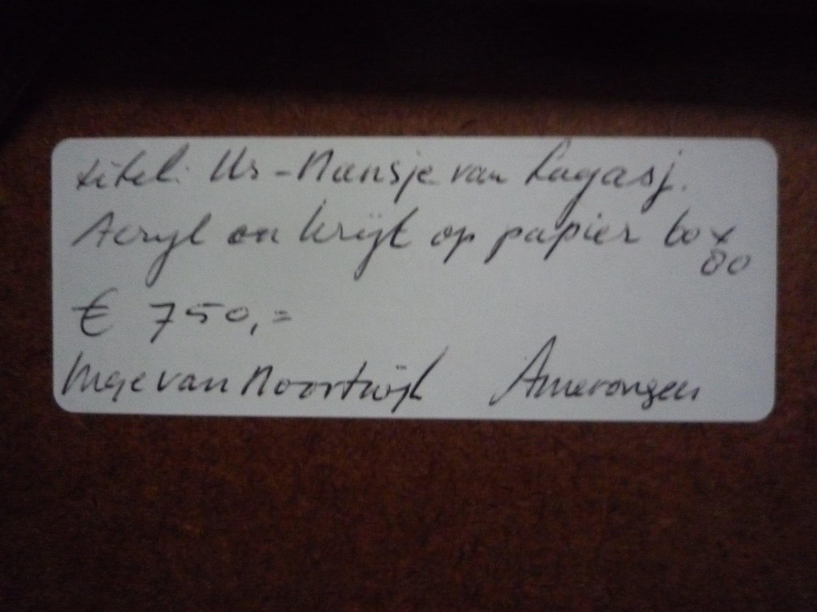Inge van Noortwijk - Us-Nansje van Layasj kopen? Bied vanaf 59!