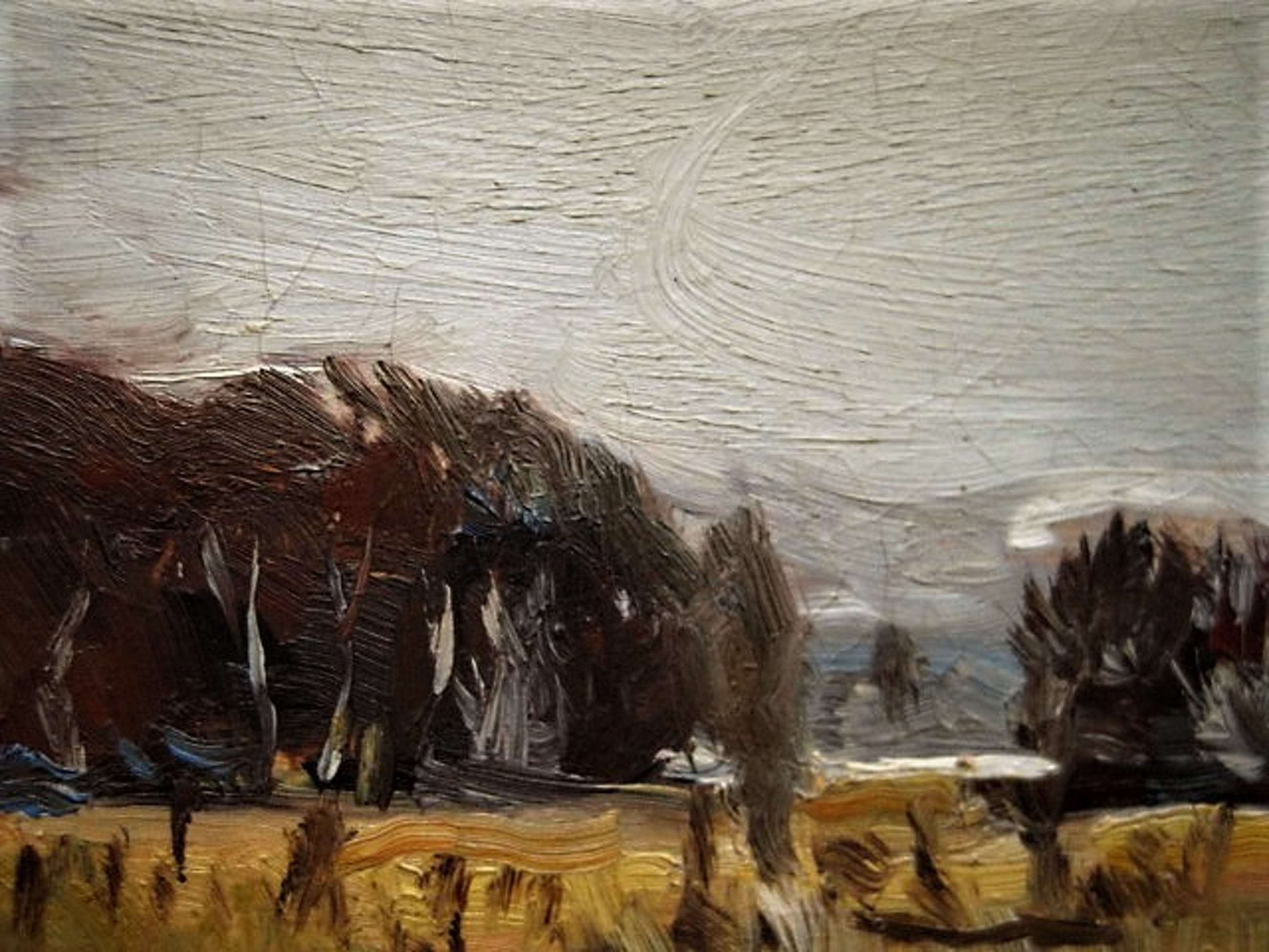 """Selma Timmerman - finalist Prix de Rome 1979 - olieverf """"Landschap bij Assendelft"""" gesigneerd kopen? Bied vanaf 10!"""