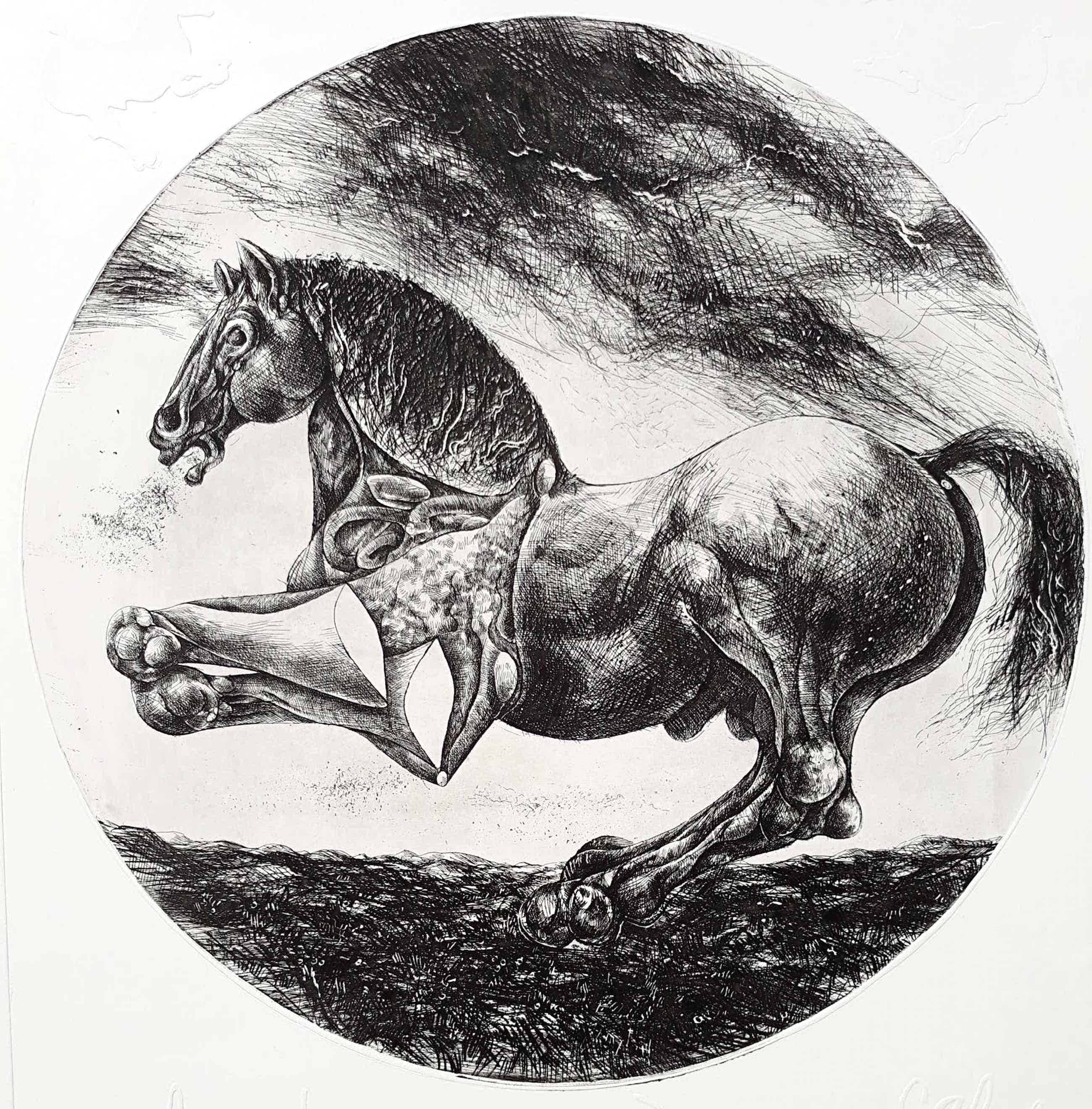 Willem Snitker - Paard, ets met reliëfdruk kopen? Bied vanaf 50!