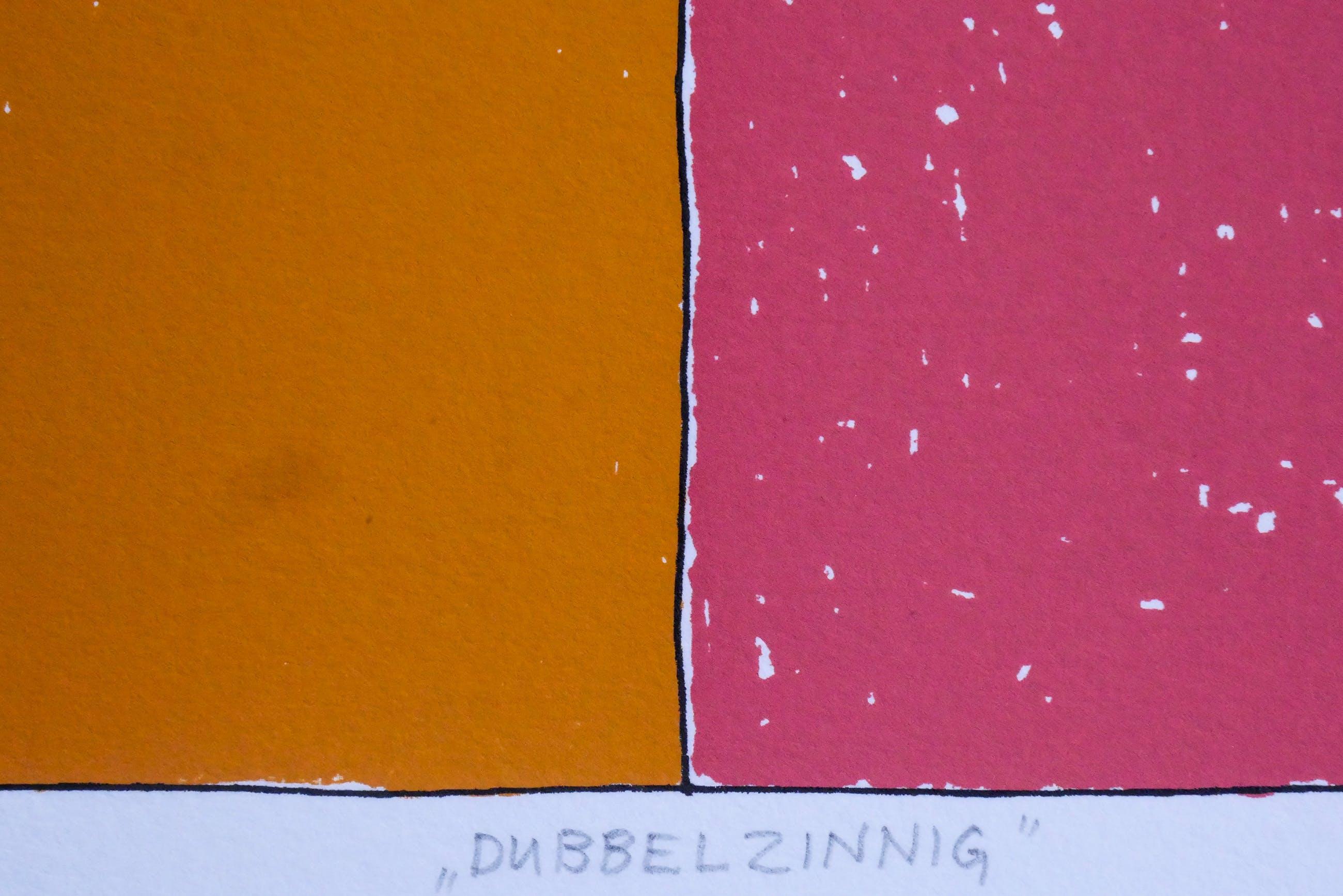 """Petra Dolleman - """"DUBBELZINNIG"""" kopen? Bied vanaf 15!"""