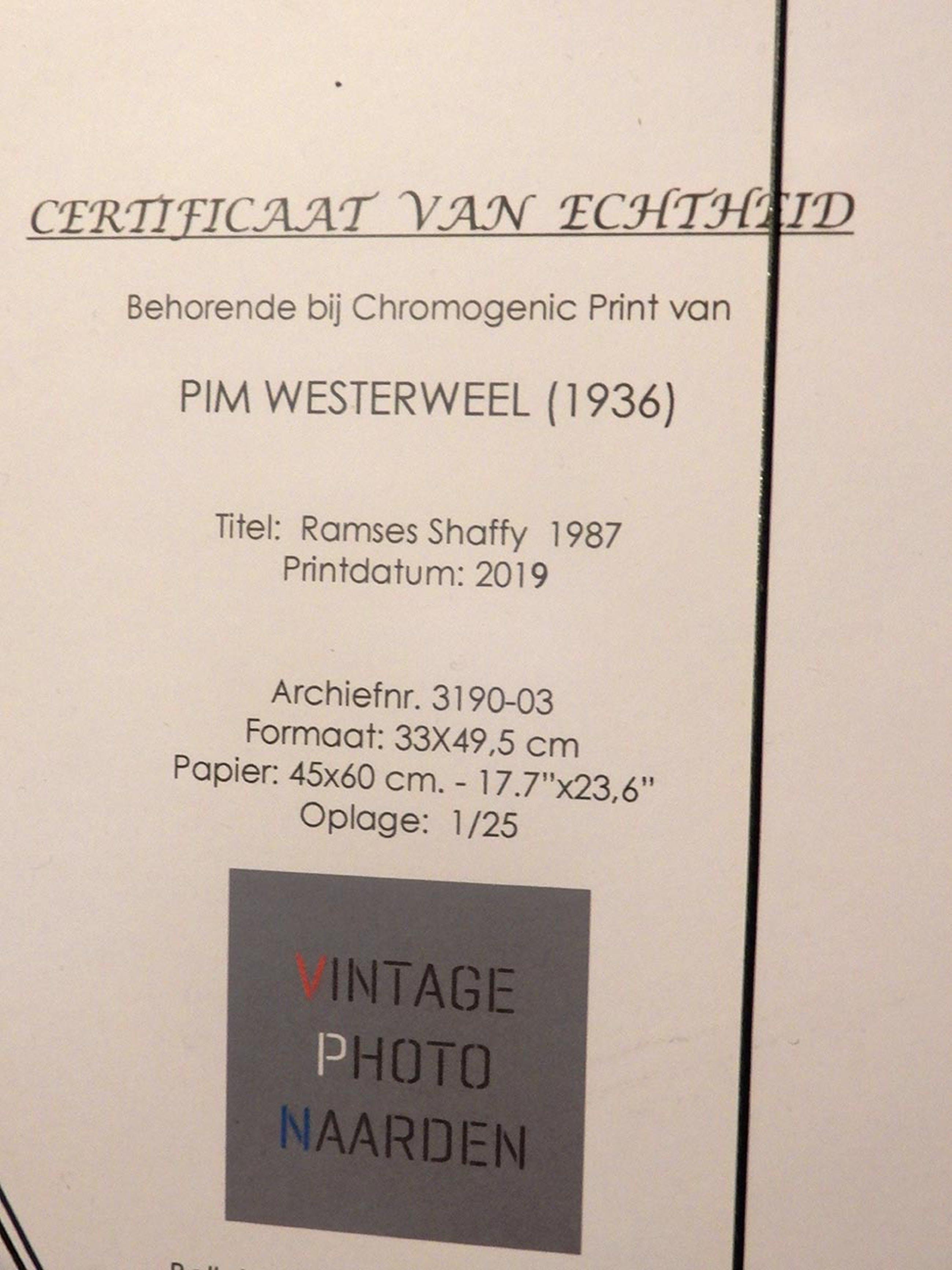 Pim Westerweel - Ramses Shaffy - Naarden 1987 kopen? Bied vanaf 150!