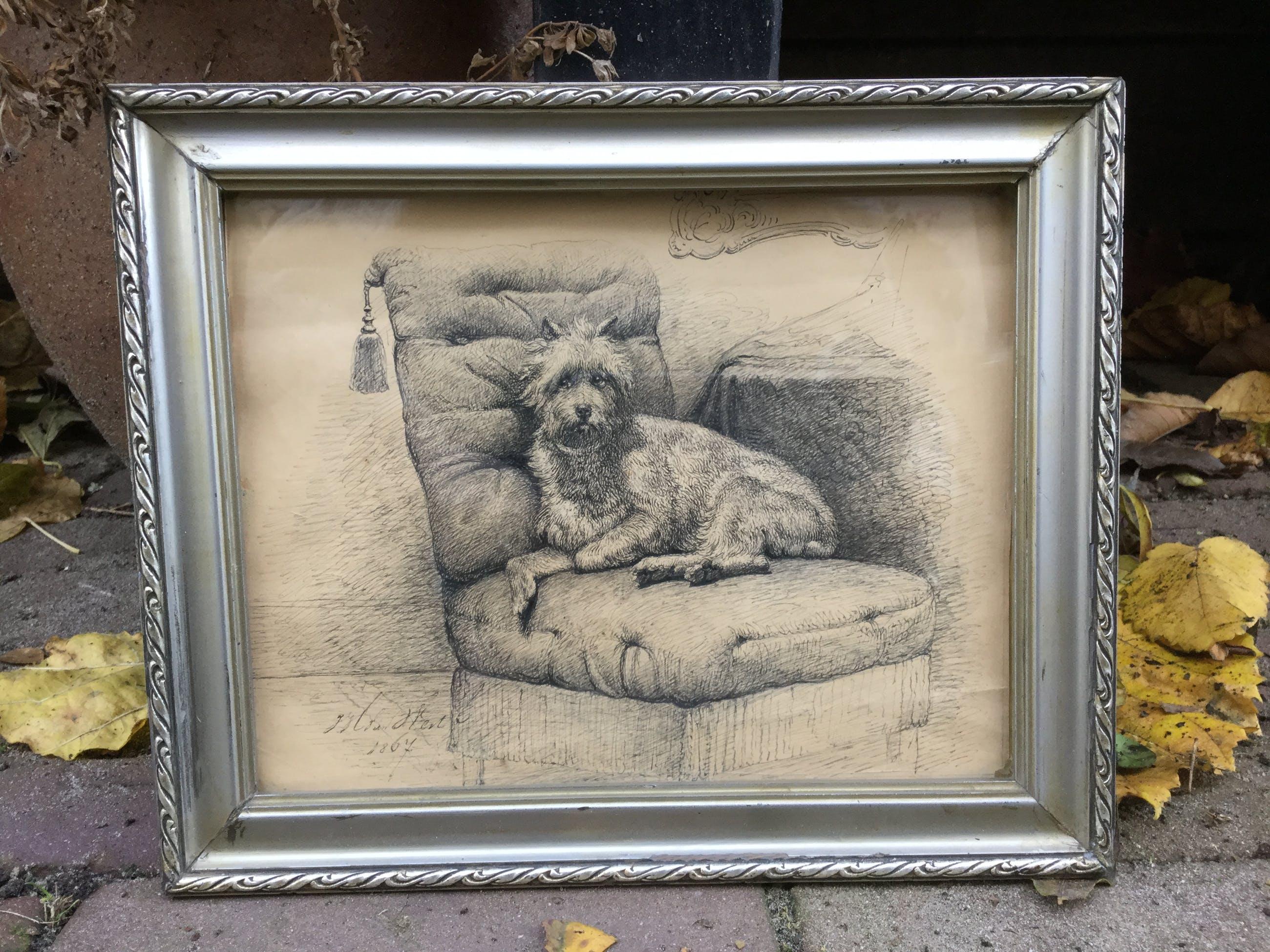 Niet of onleesbaar gesigneerd - C2510 - Hondenportret kopen? Bied vanaf 1!