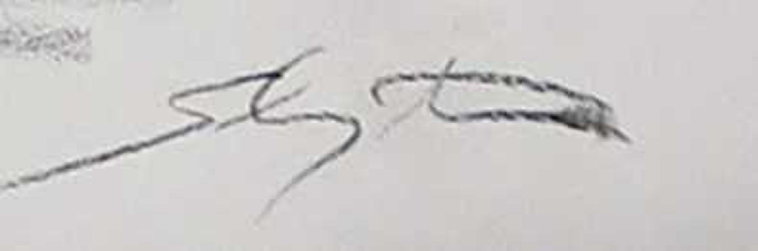 Jan Sluijters (jr.) - Potloodtekening, Liggend naakt kopen? Bied vanaf 35!