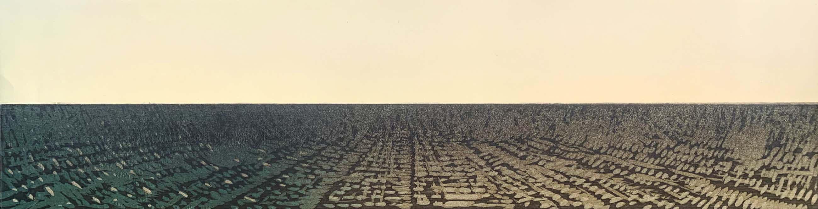 Willem de Vries - Houtsnede - 'Panorama VI' - 1986 kopen? Bied vanaf 50!