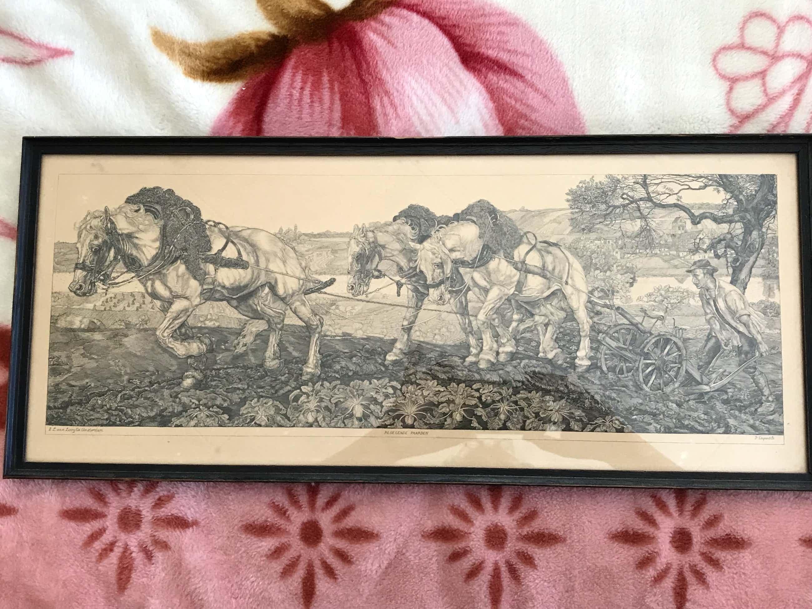 Pieter Dupont - Ploegende paarden kopen? Bied vanaf 125!