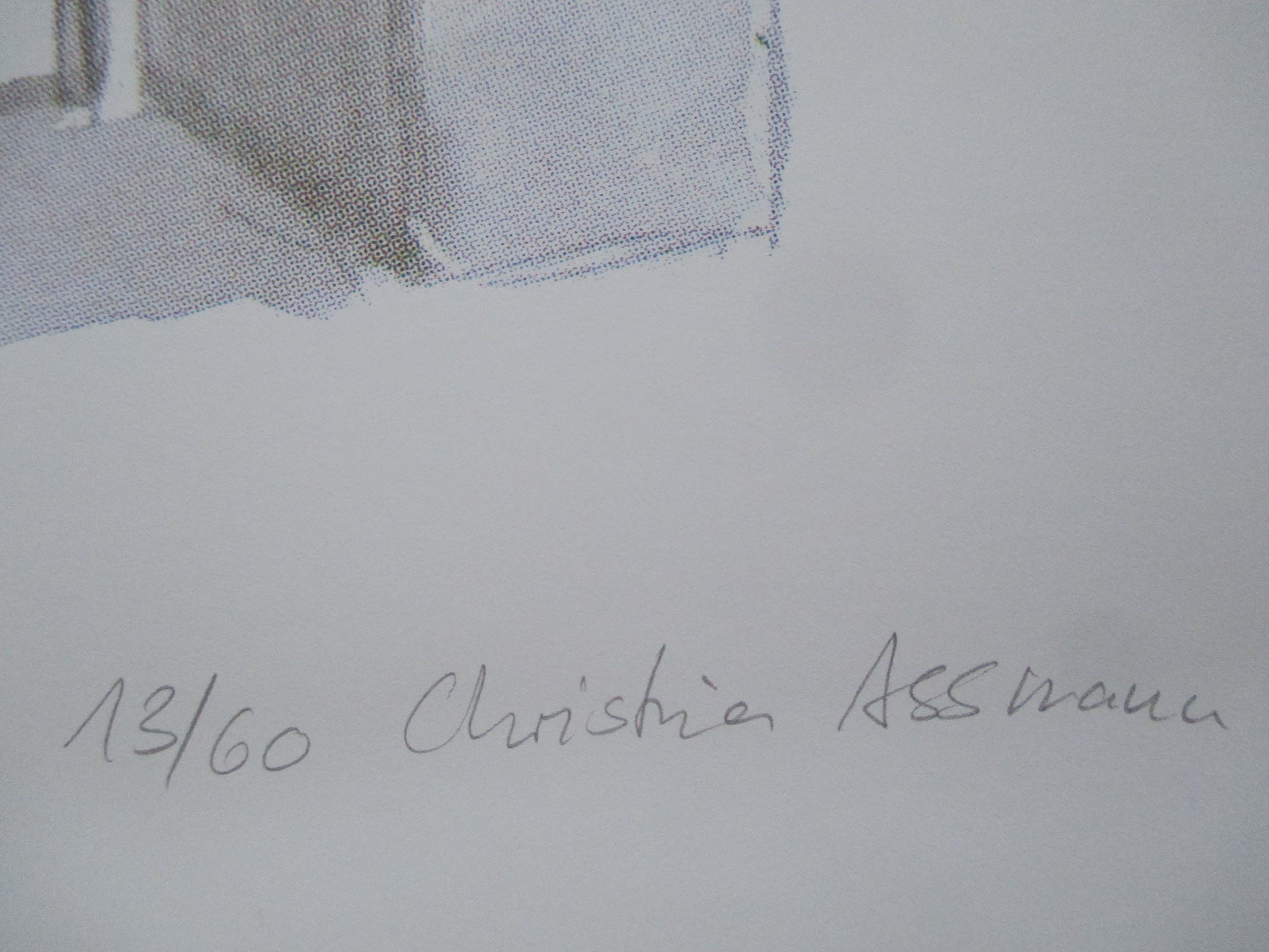 Christina Assmann - /Andreas Siekmann- litho Sonsbeek 1993 kopen? Bied vanaf 25!