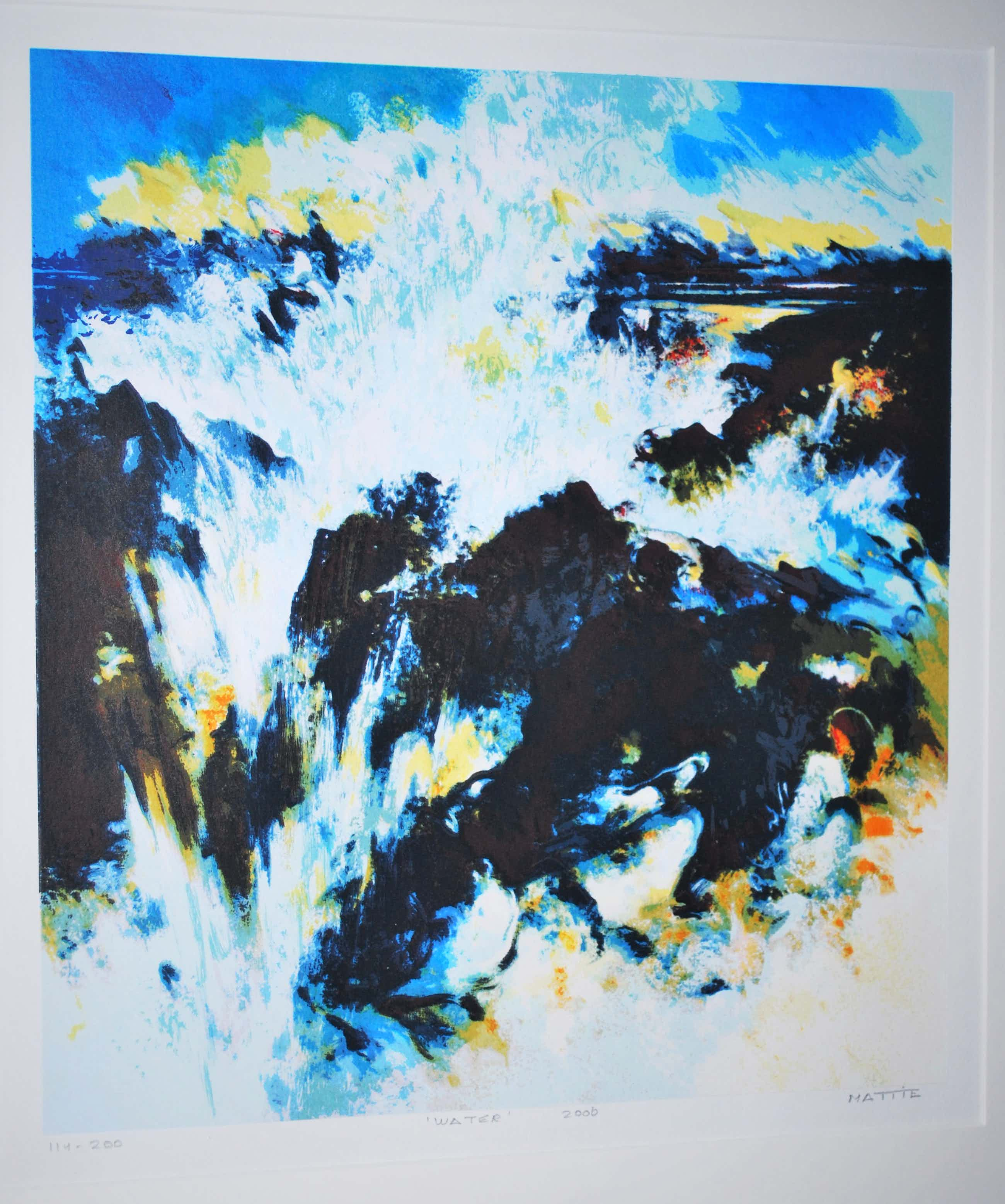 Mattie Schilders - Water - mooi ingelijste zeefdruk, 2006 kopen? Bied vanaf 40!